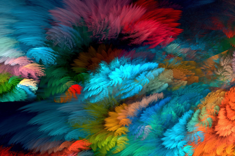 буйство красок обои белок очень рад