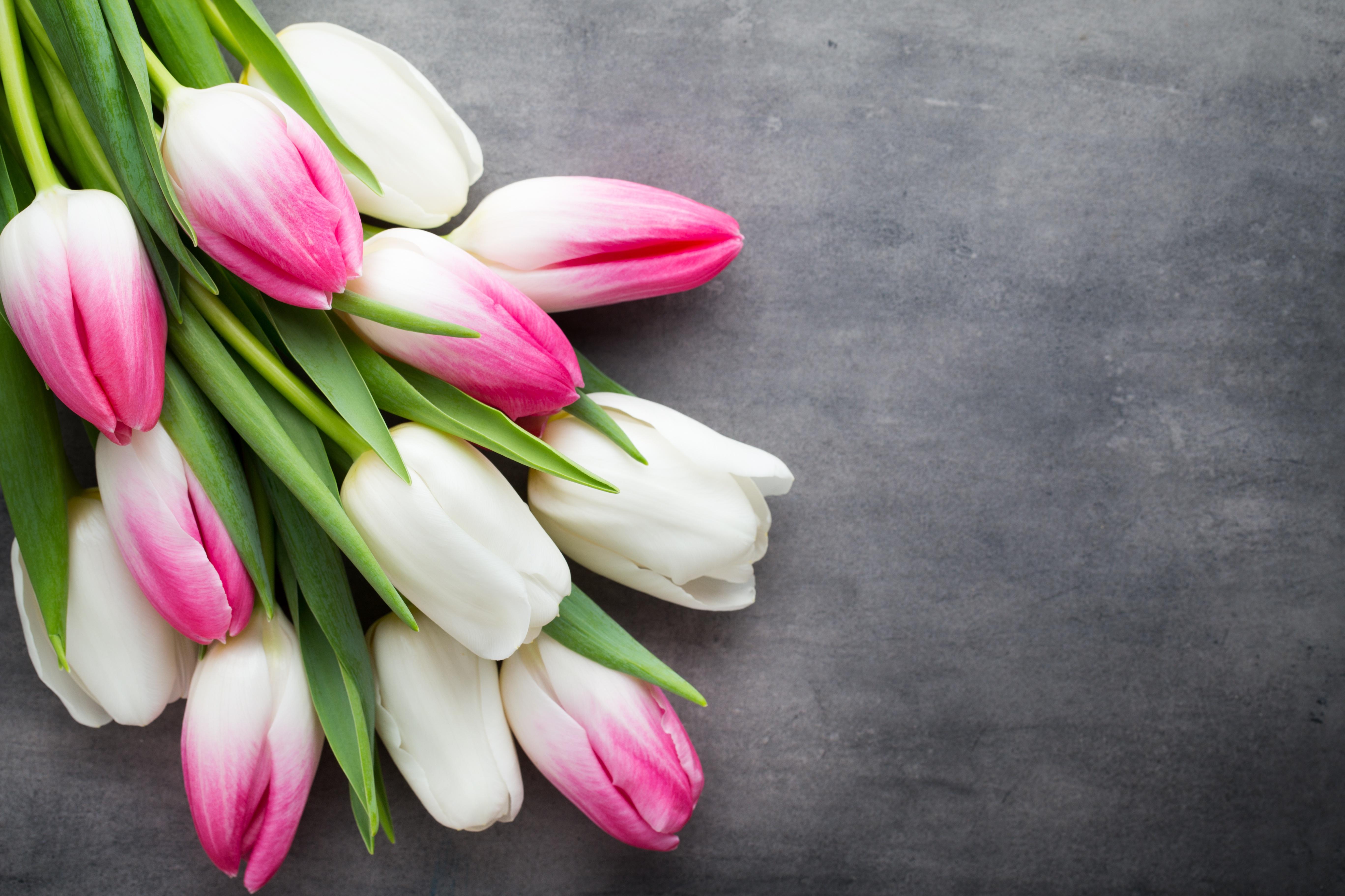 тюльпаны букет мешковина без смс