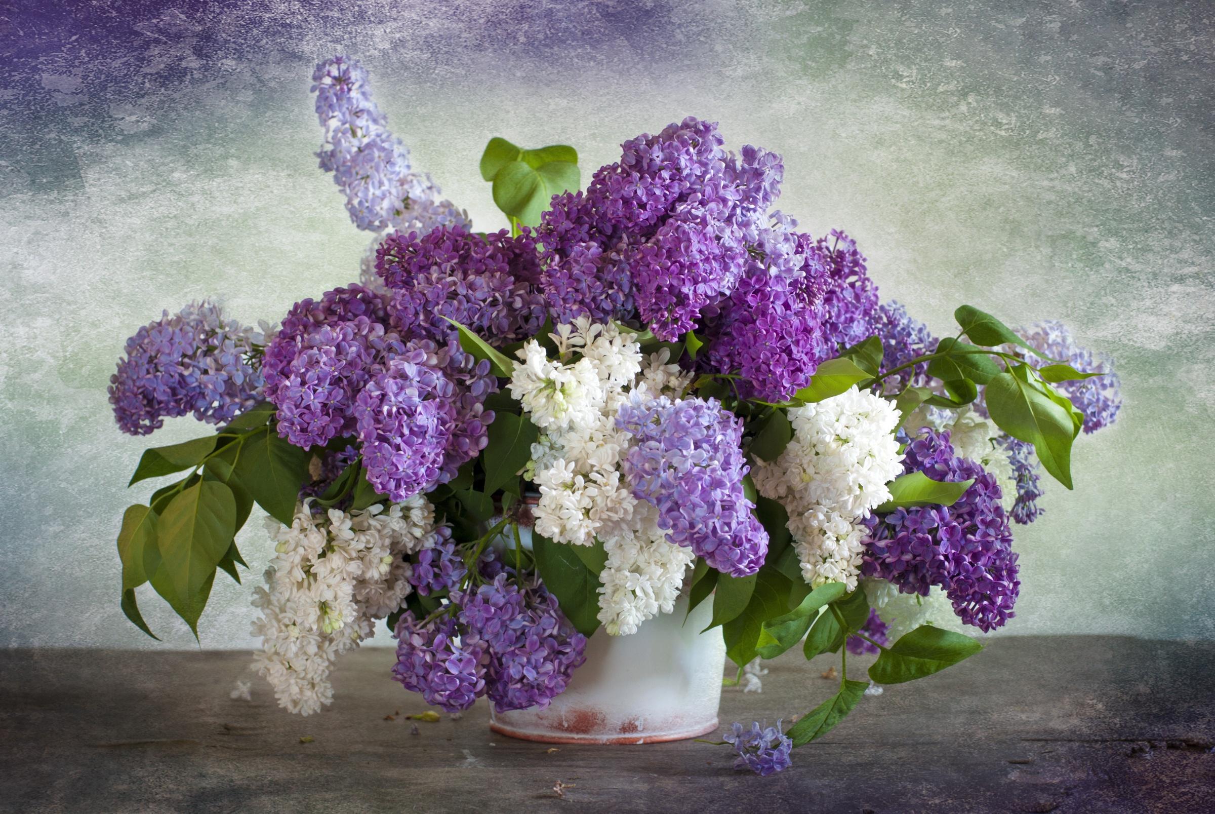 природа цветы ваза сирень  № 3063927 бесплатно