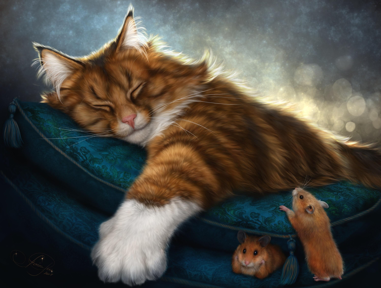котята сон  № 3648491 бесплатно