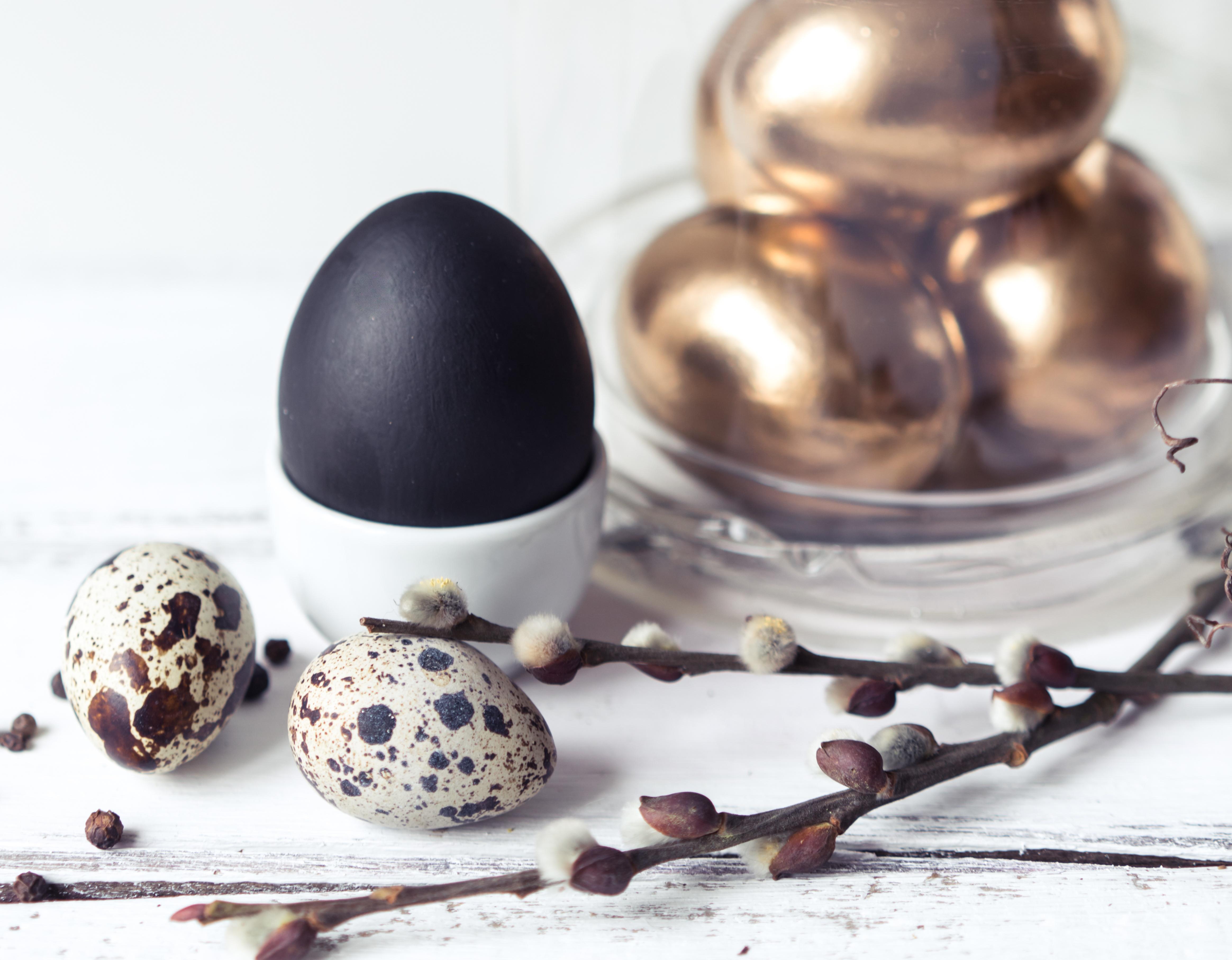 Обои перо, яйца. Разное foto 19