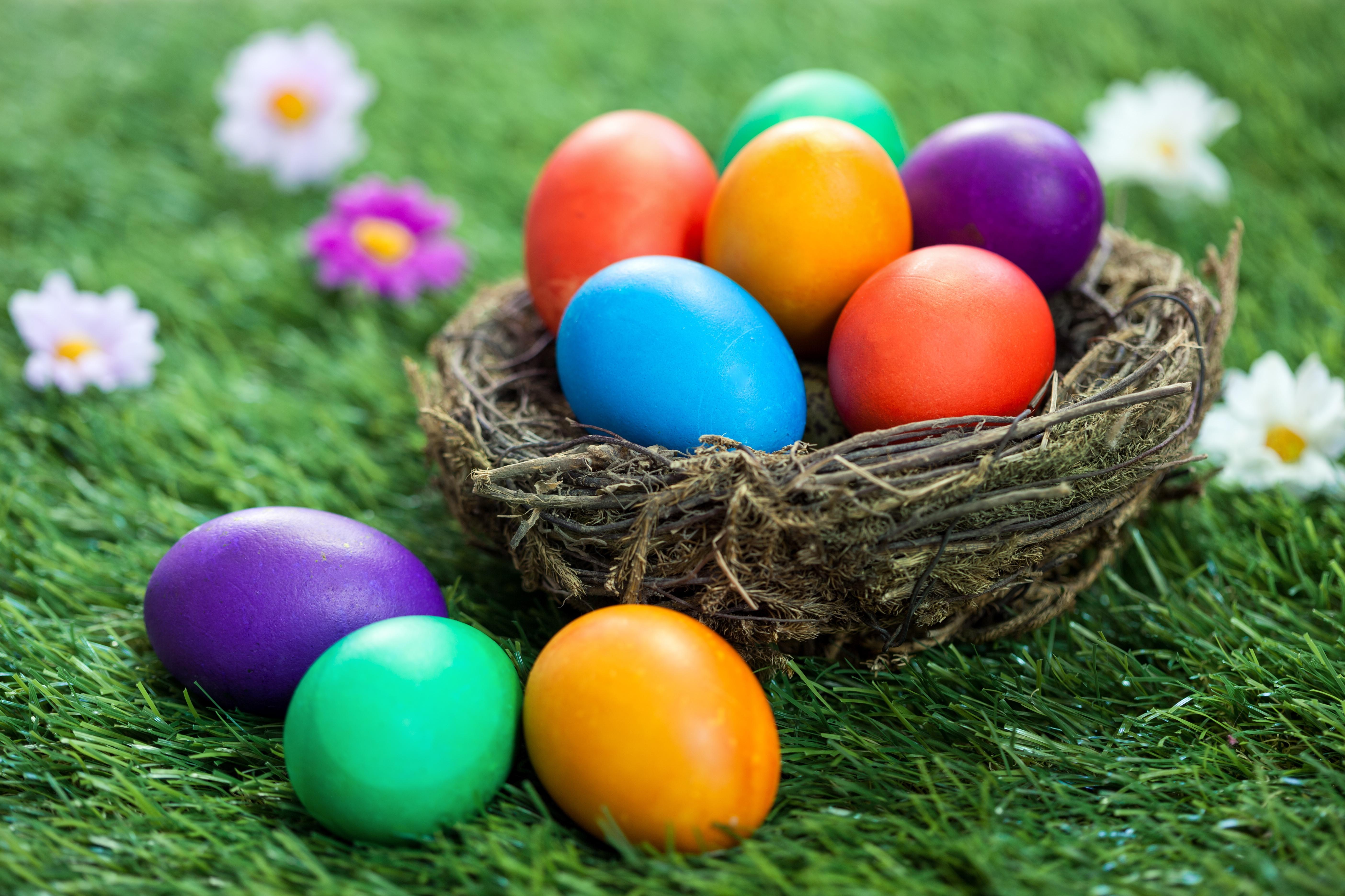 Картинки с яйцами на пасху, картинки анимация