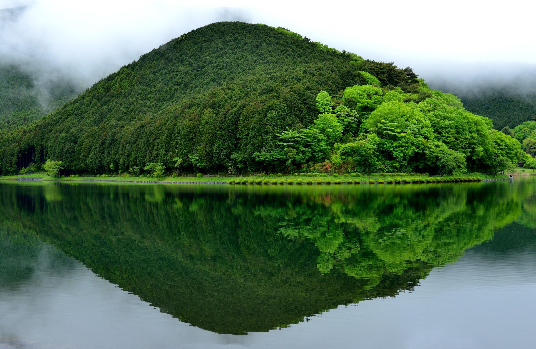 Озеро, гора, зеленый лес  № 621600  скачать