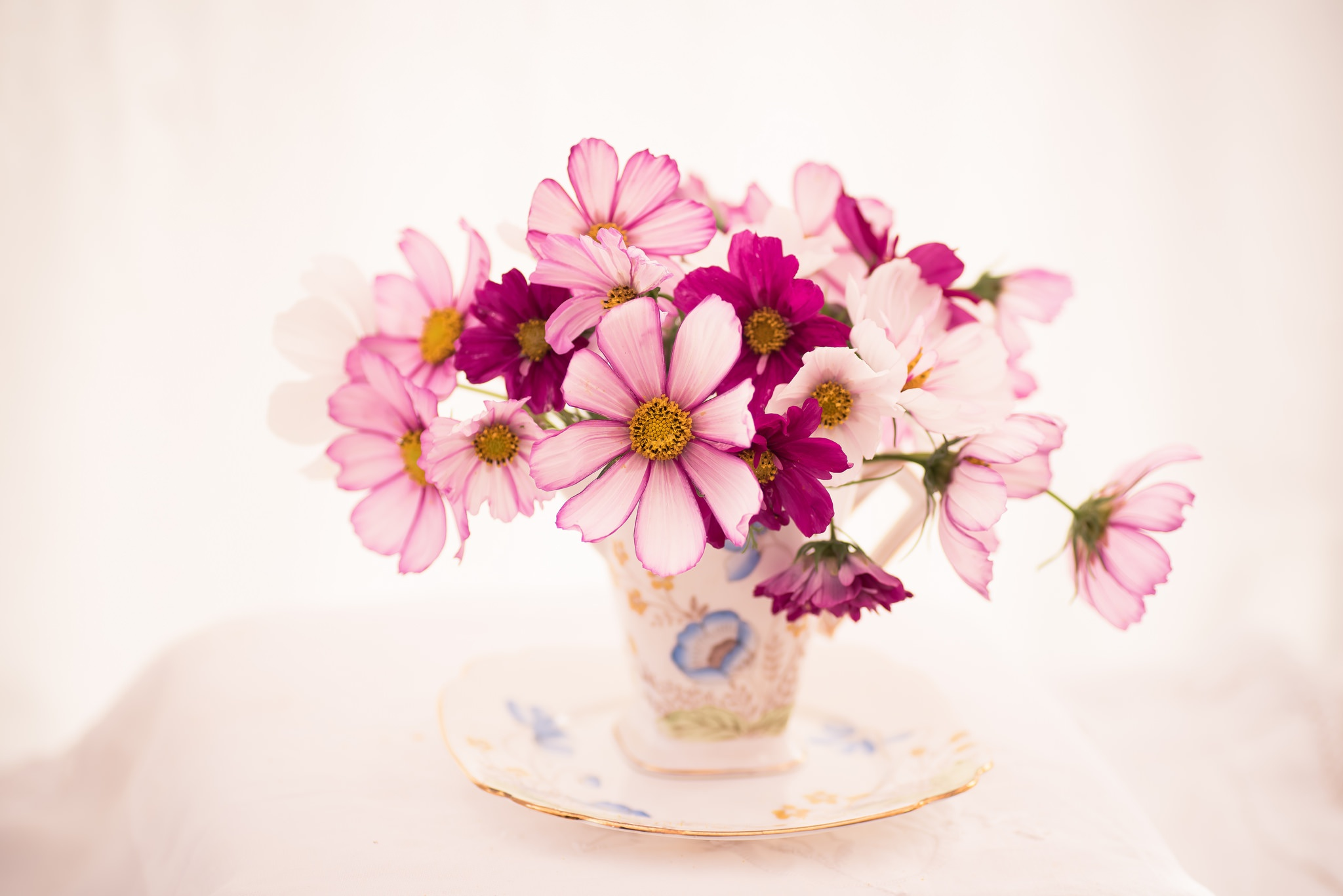 Цветок космея букеты фото, букет каталог киев