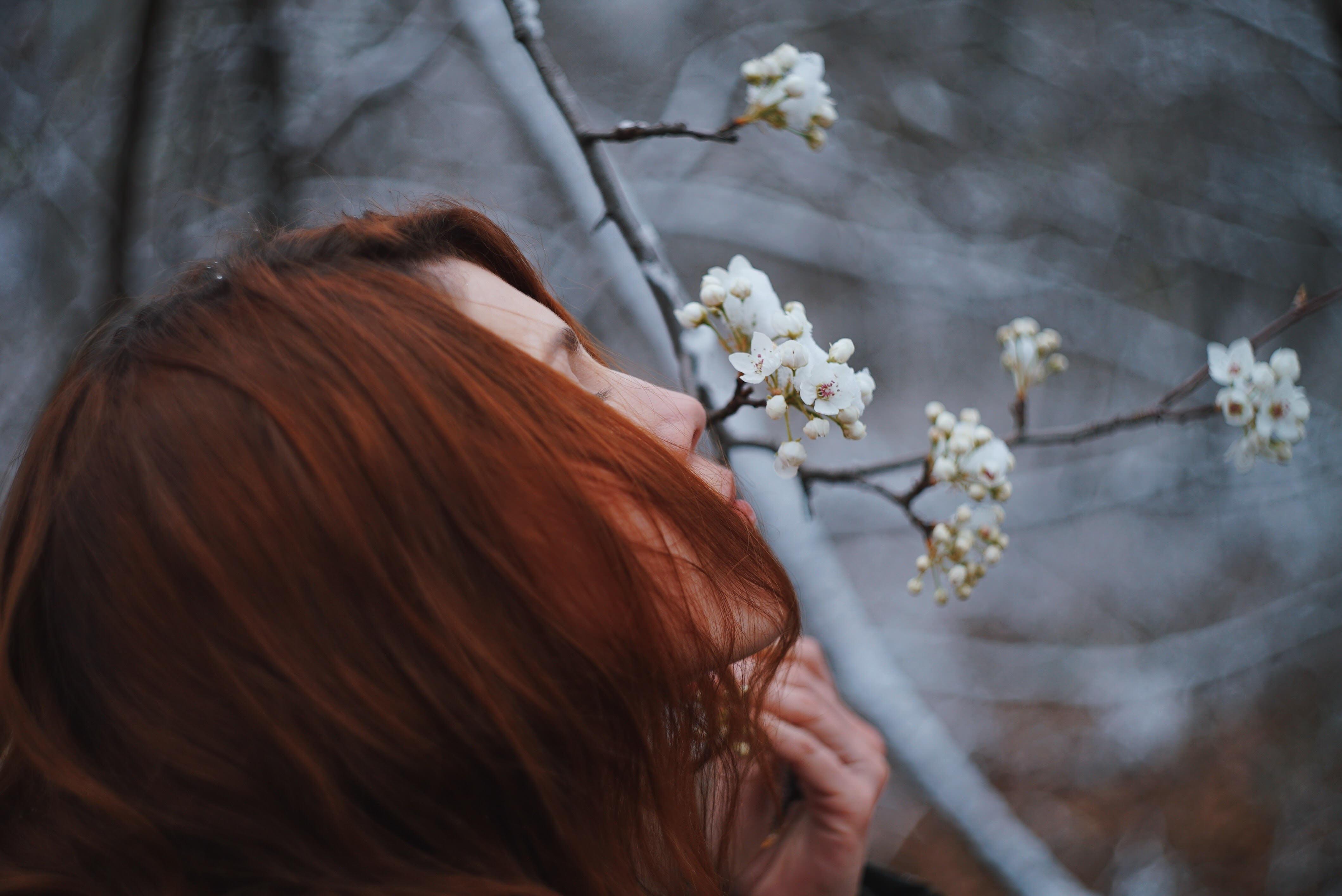 девушка ветка дерево задумчивость girl branch tree thoughtfulness загрузить