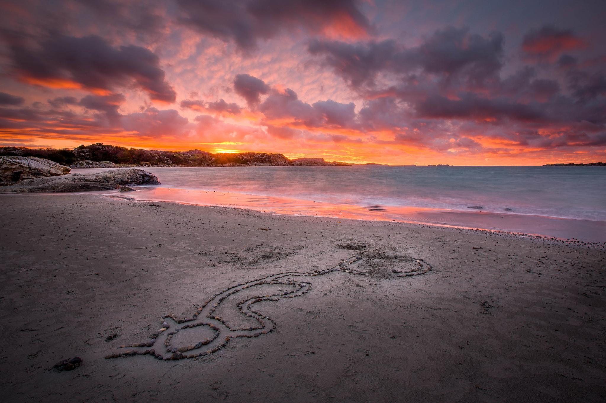 море океан камни скалы закат sea the ocean stones rock sunset  № 2530602 бесплатно