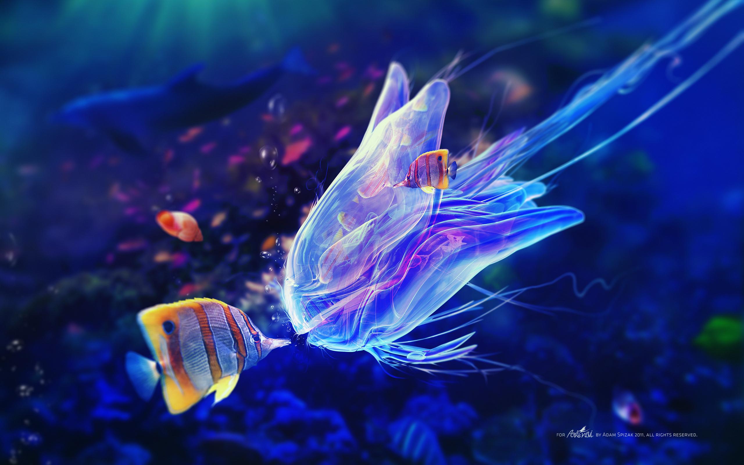 Море с рыбой сон
