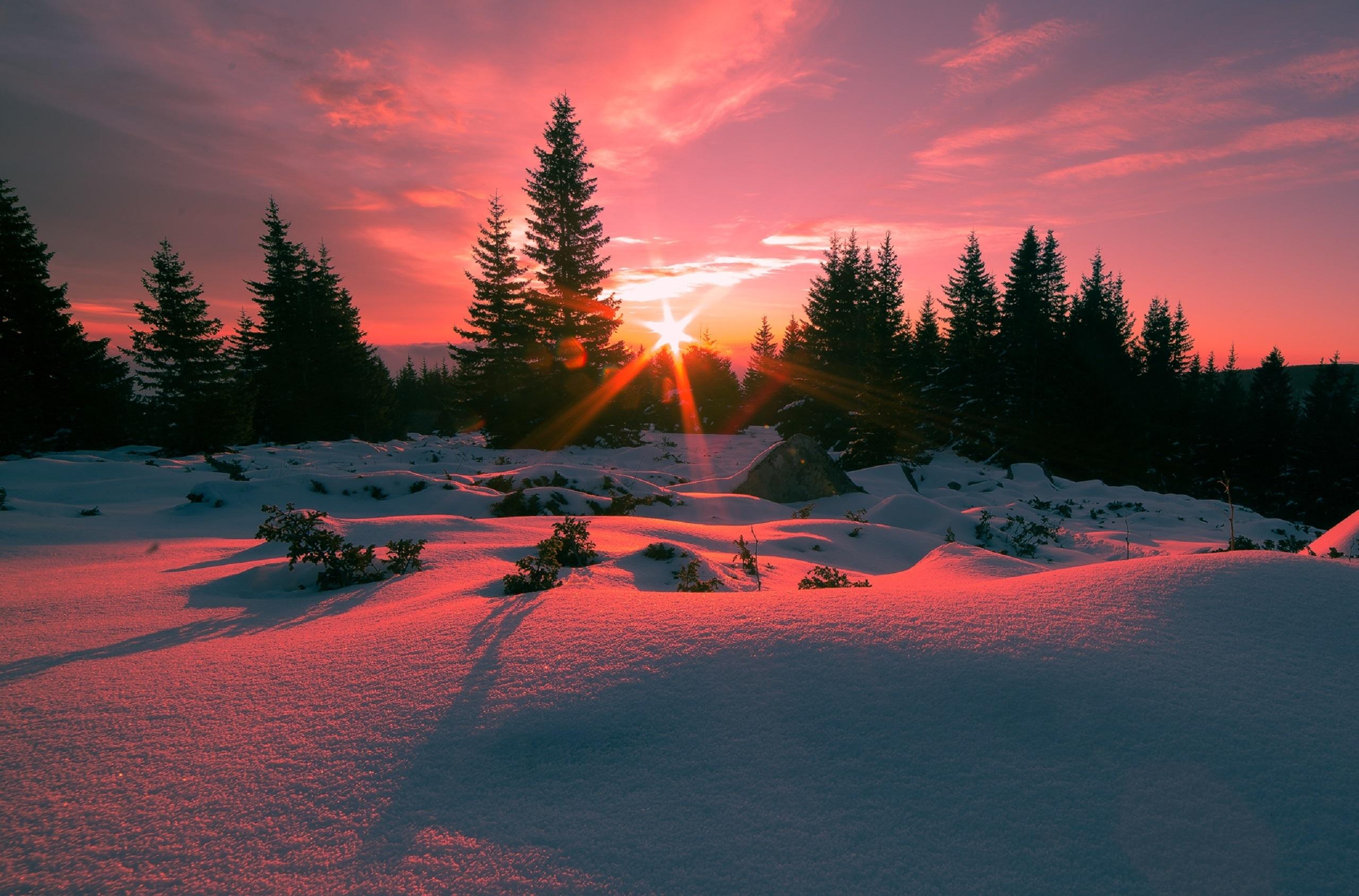красивые картинки зимний закат возрасте