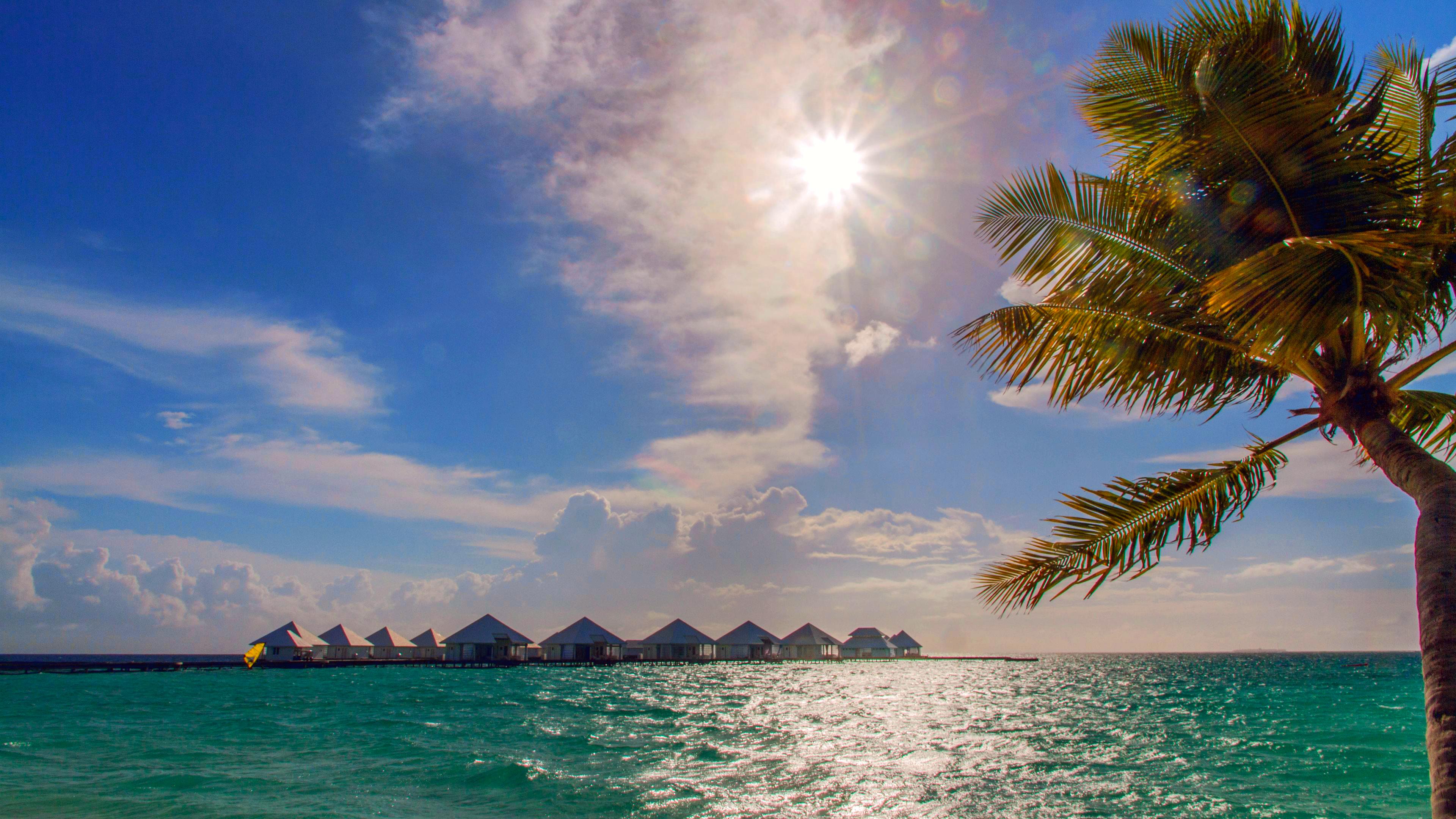 бунгало море пальмы скачать