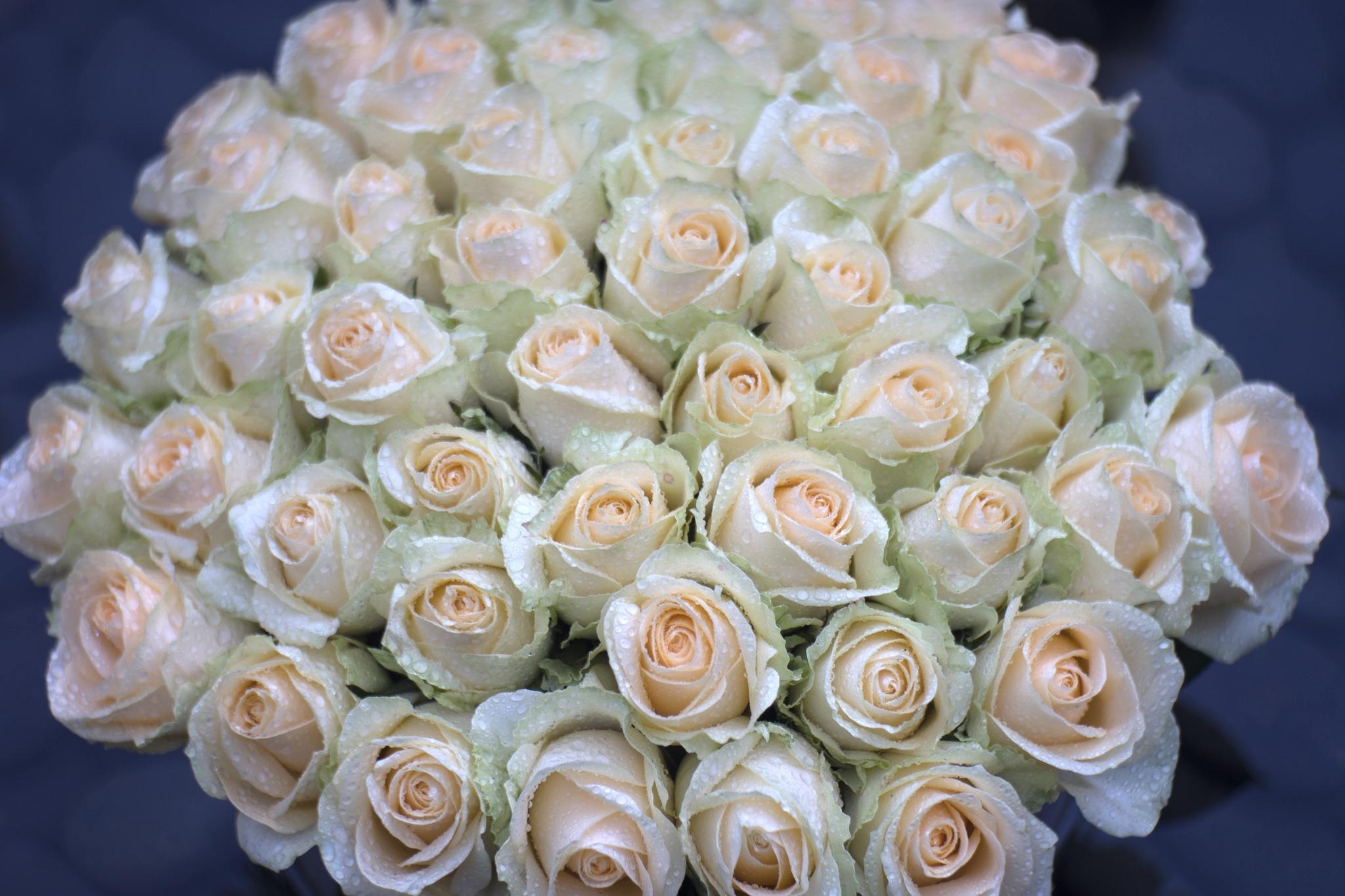 картинки с днем рождения цветы охапки популярные