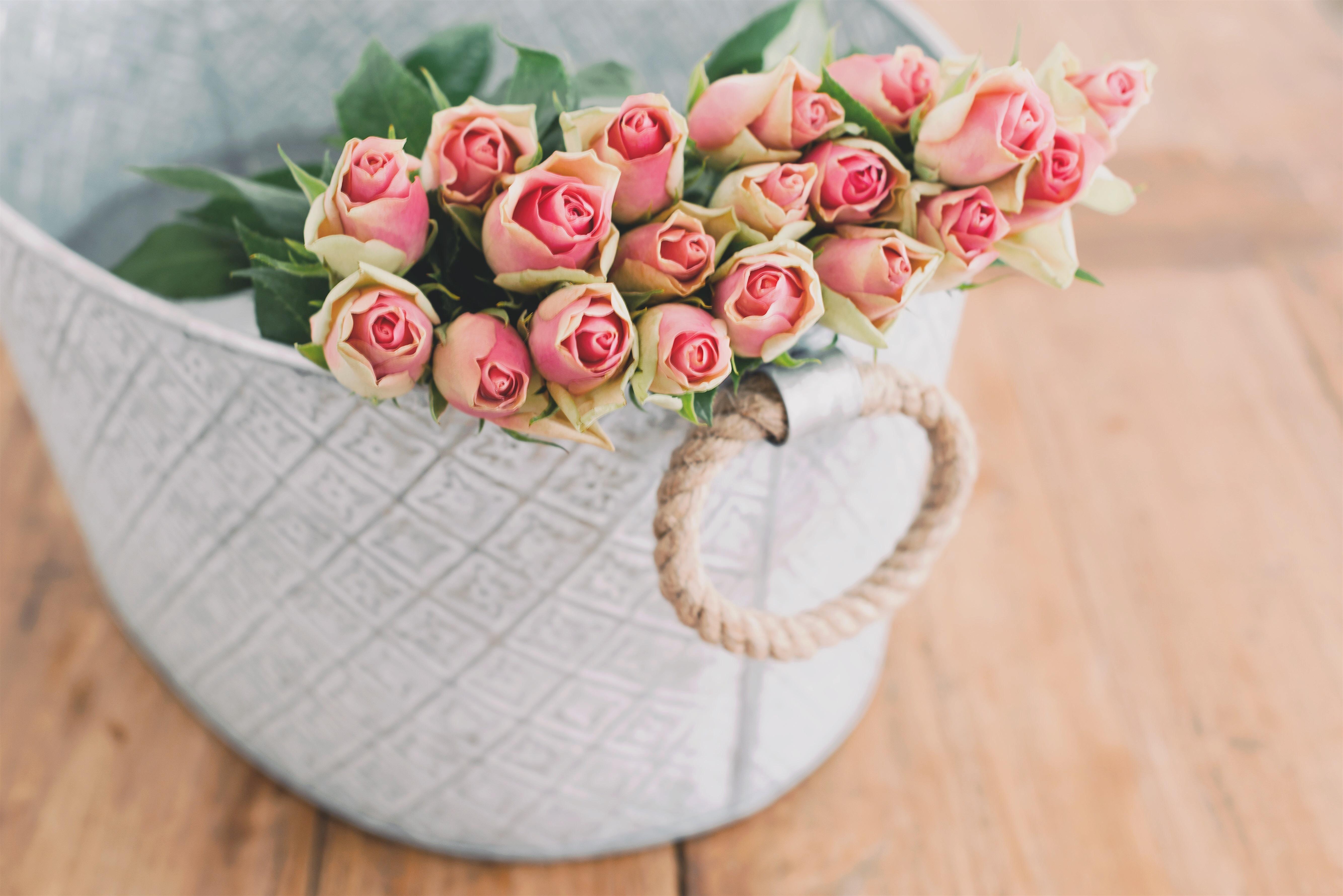 картинки на рабочий стол цветы в коробке целью выявления туберкулеза