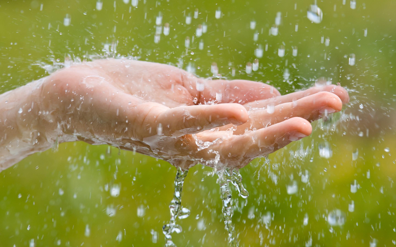 Про выходной, картинка чистые руки