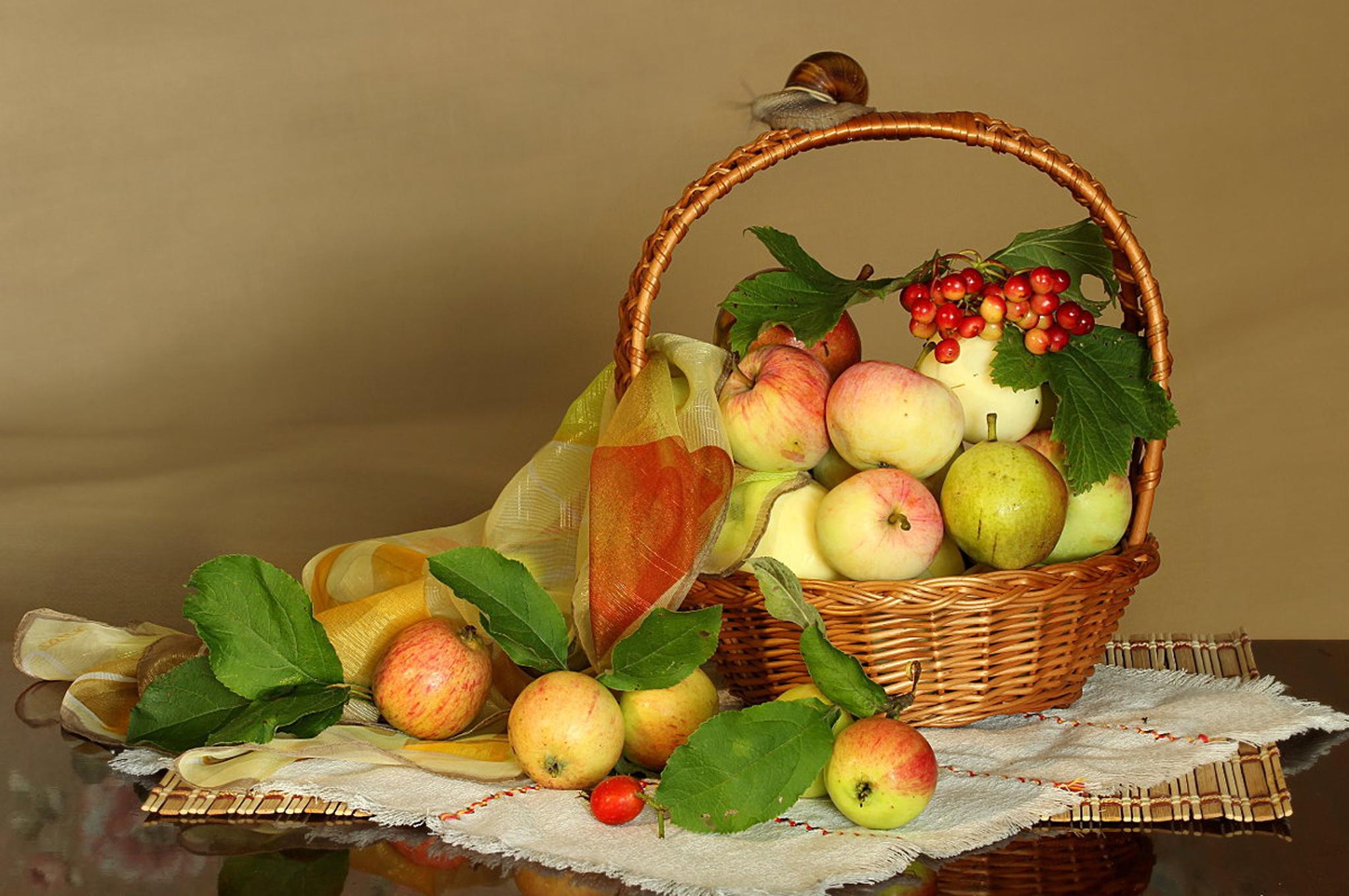 ненавистные яблоки в корзине осень фото можете подобрать