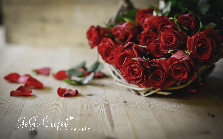 Фото роз букет на полу