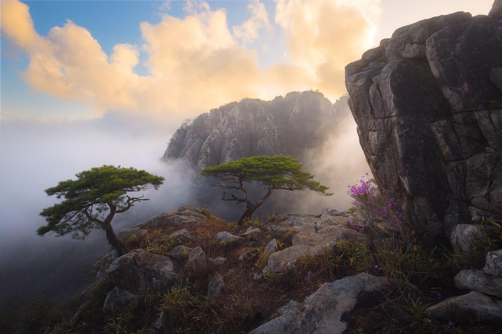 природа река горы скалы деревья облака  № 3796775  скачать