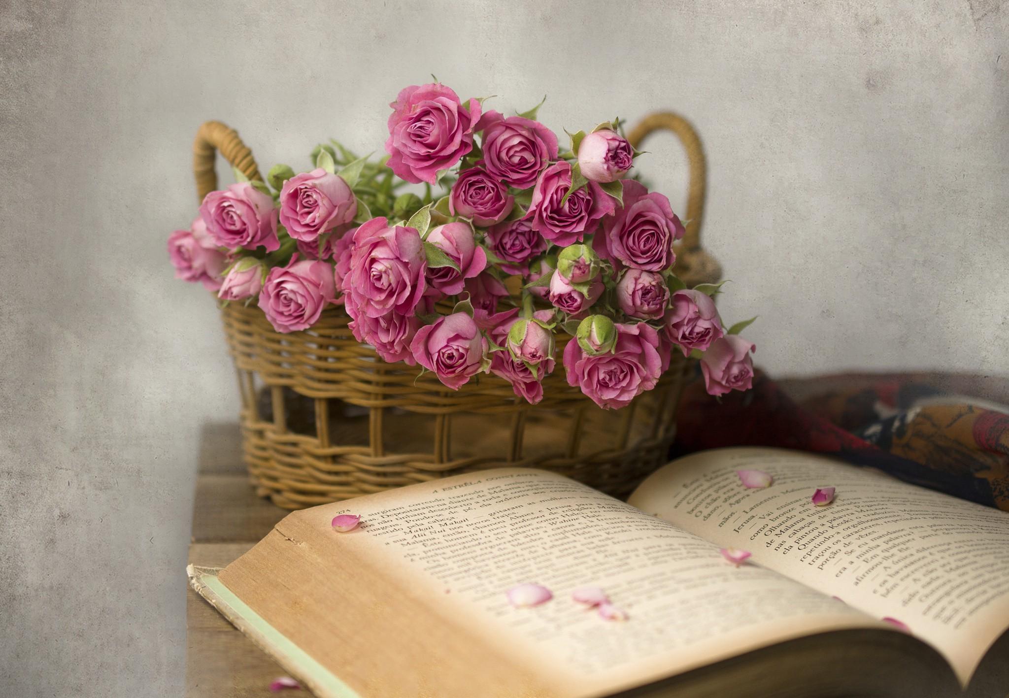 Утро, открытка с днем рождения книга и цветы