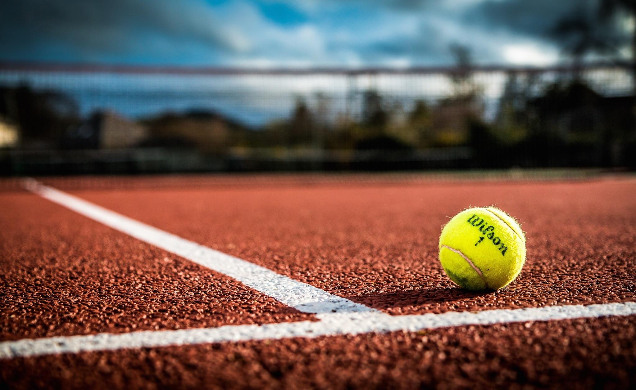 теннисный мяч  № 1367128 загрузить