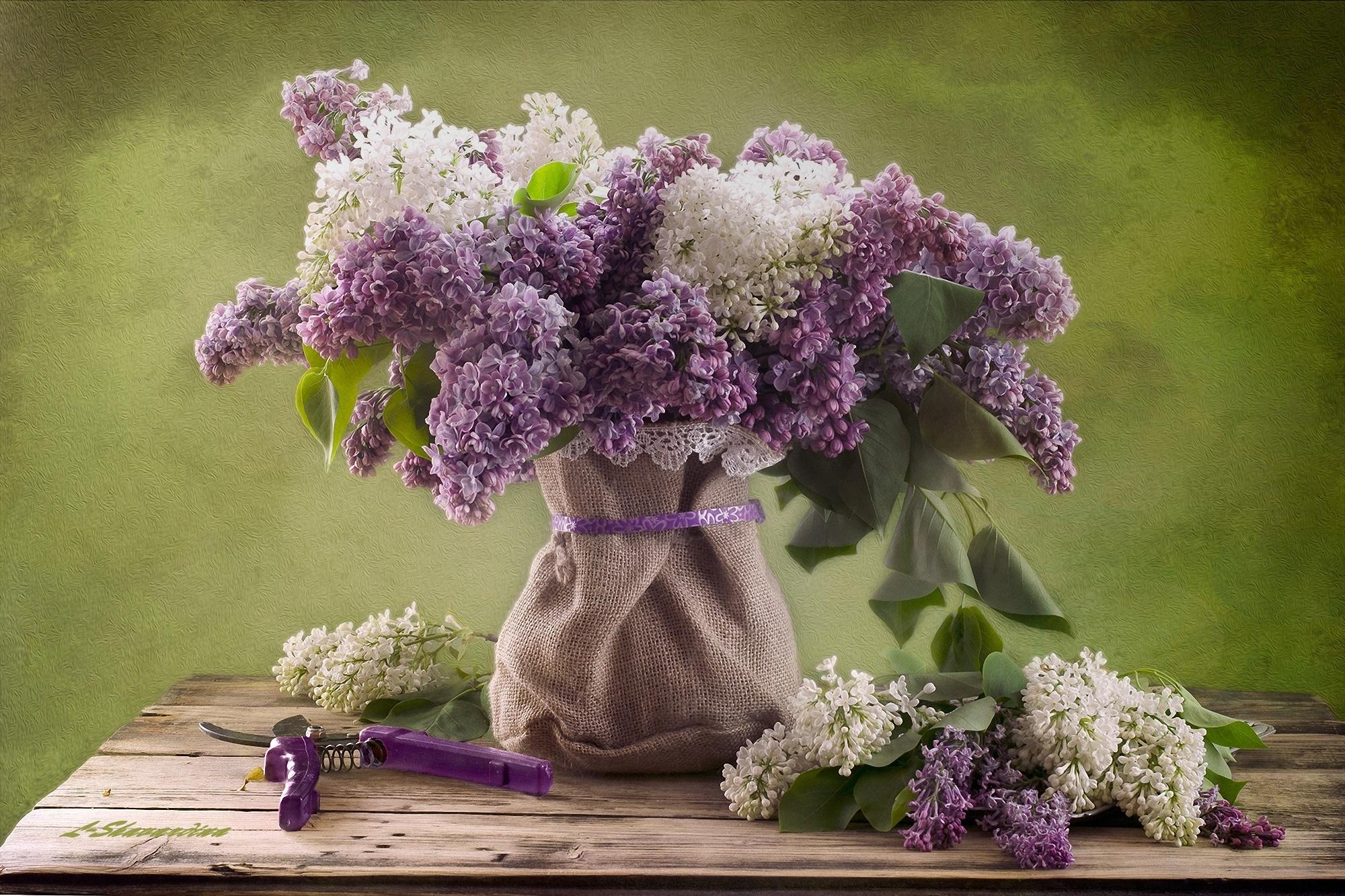 Букет марта, цветы сирень букет фото