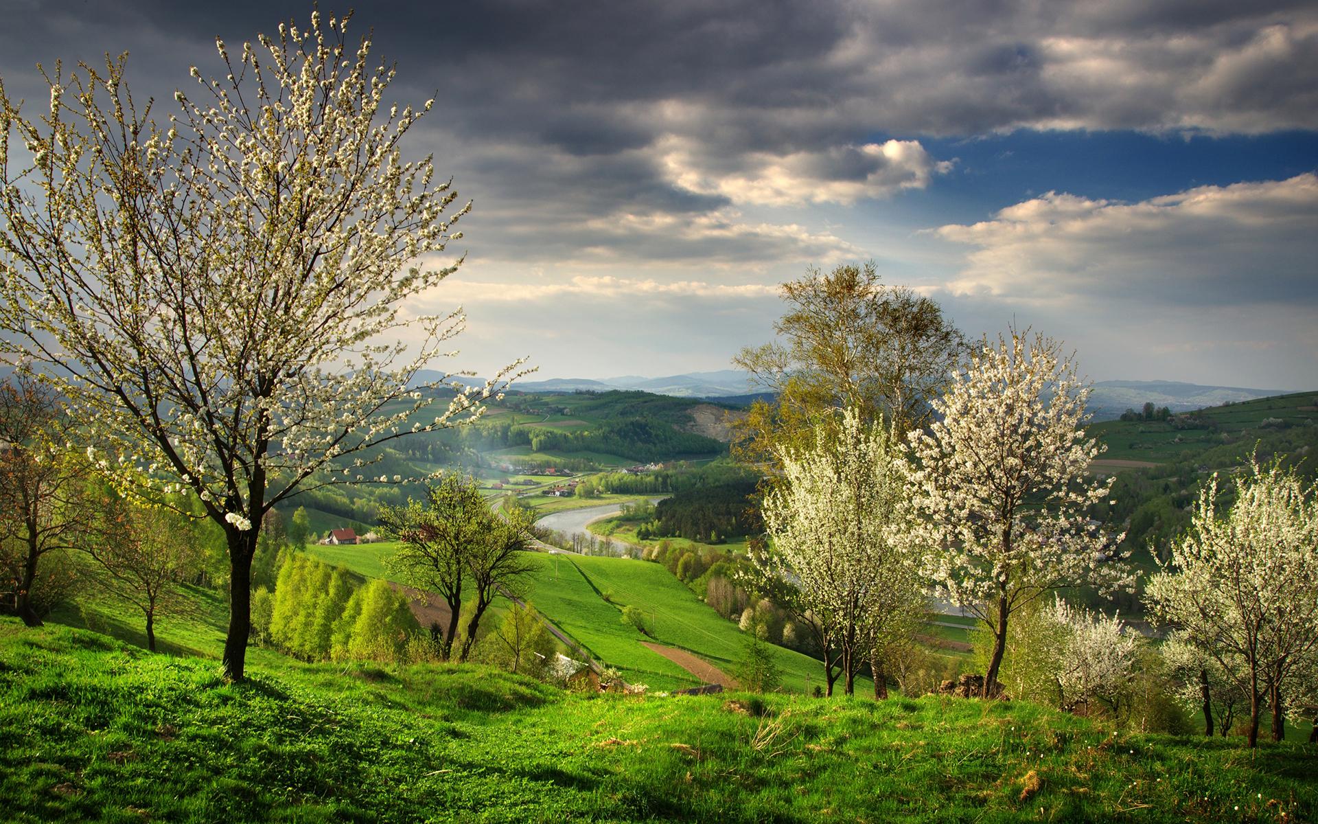 Пейзажные картинки весна все