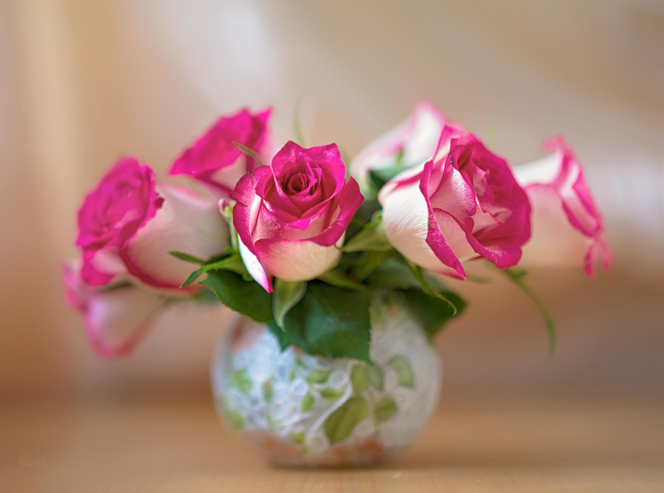 розы цветы ваза  № 1332560 без смс