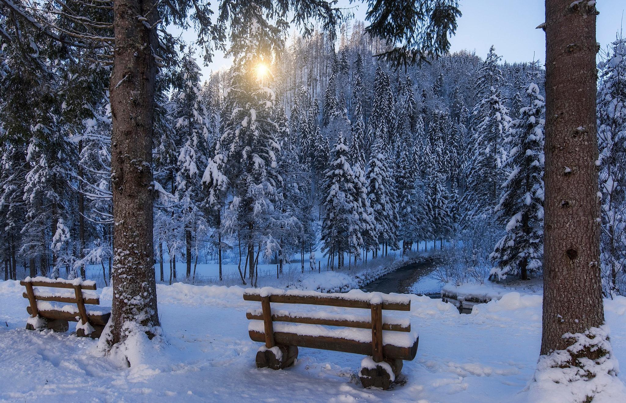 Снег, зима, лавочка, лес без смс