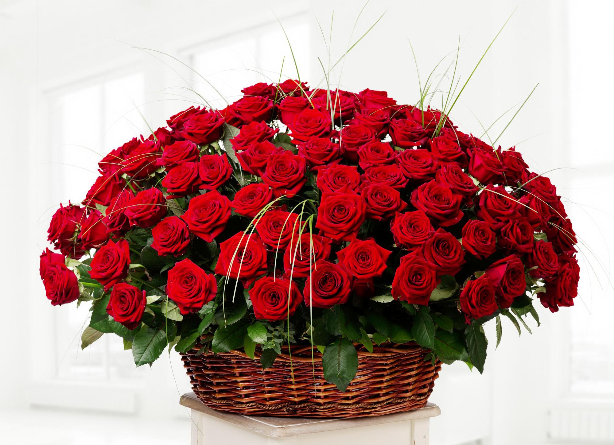 Открытка картинка большой букет роз