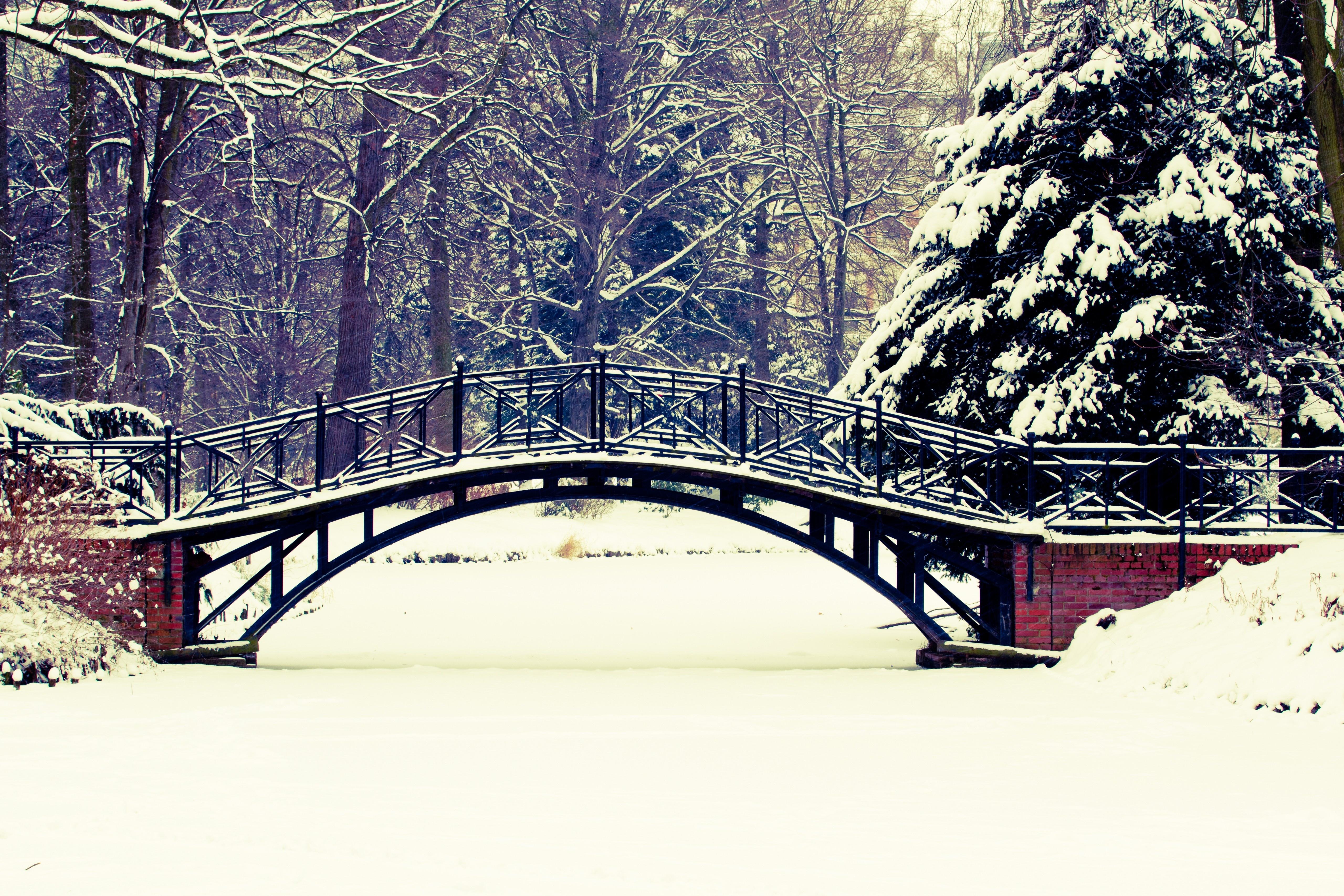 снег деревья мост загрузить