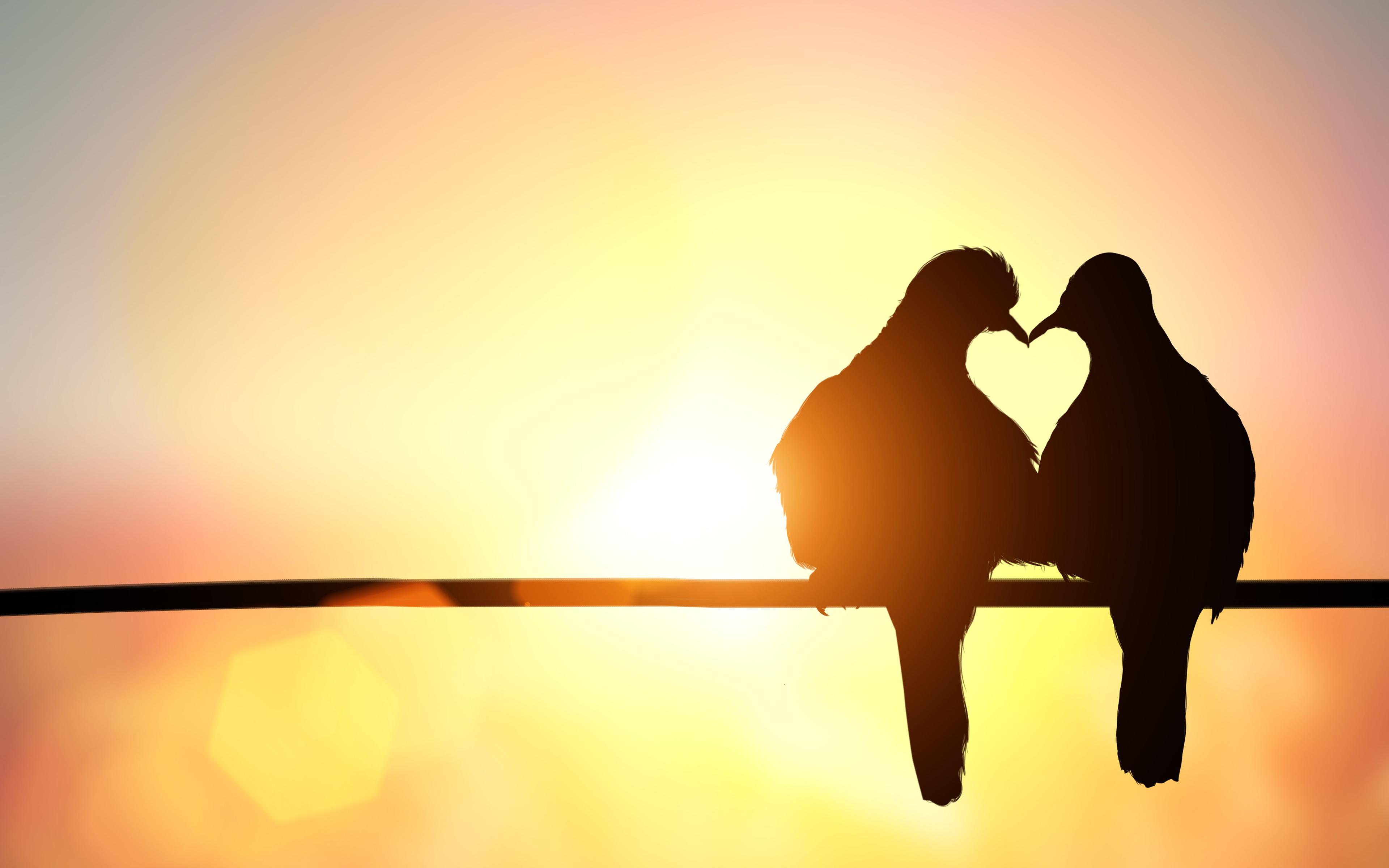 Картинки расставания птиц и животных