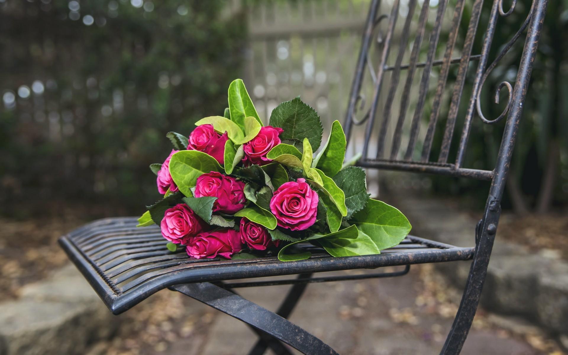цветы на скамейке фото предполагает использование одного