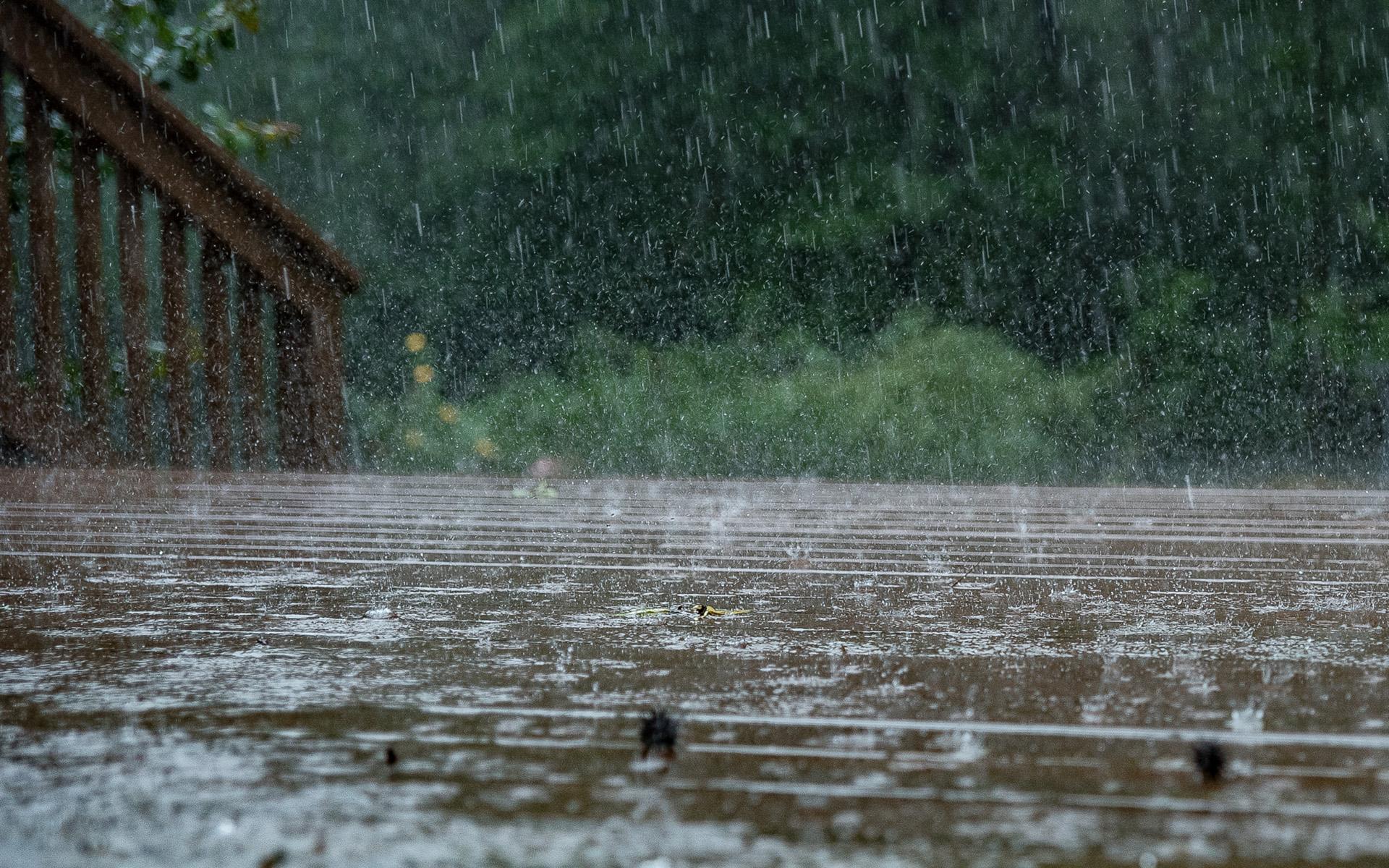 верещалка картинки идет дождь на рабочий стол выполнил приказ вернулся
