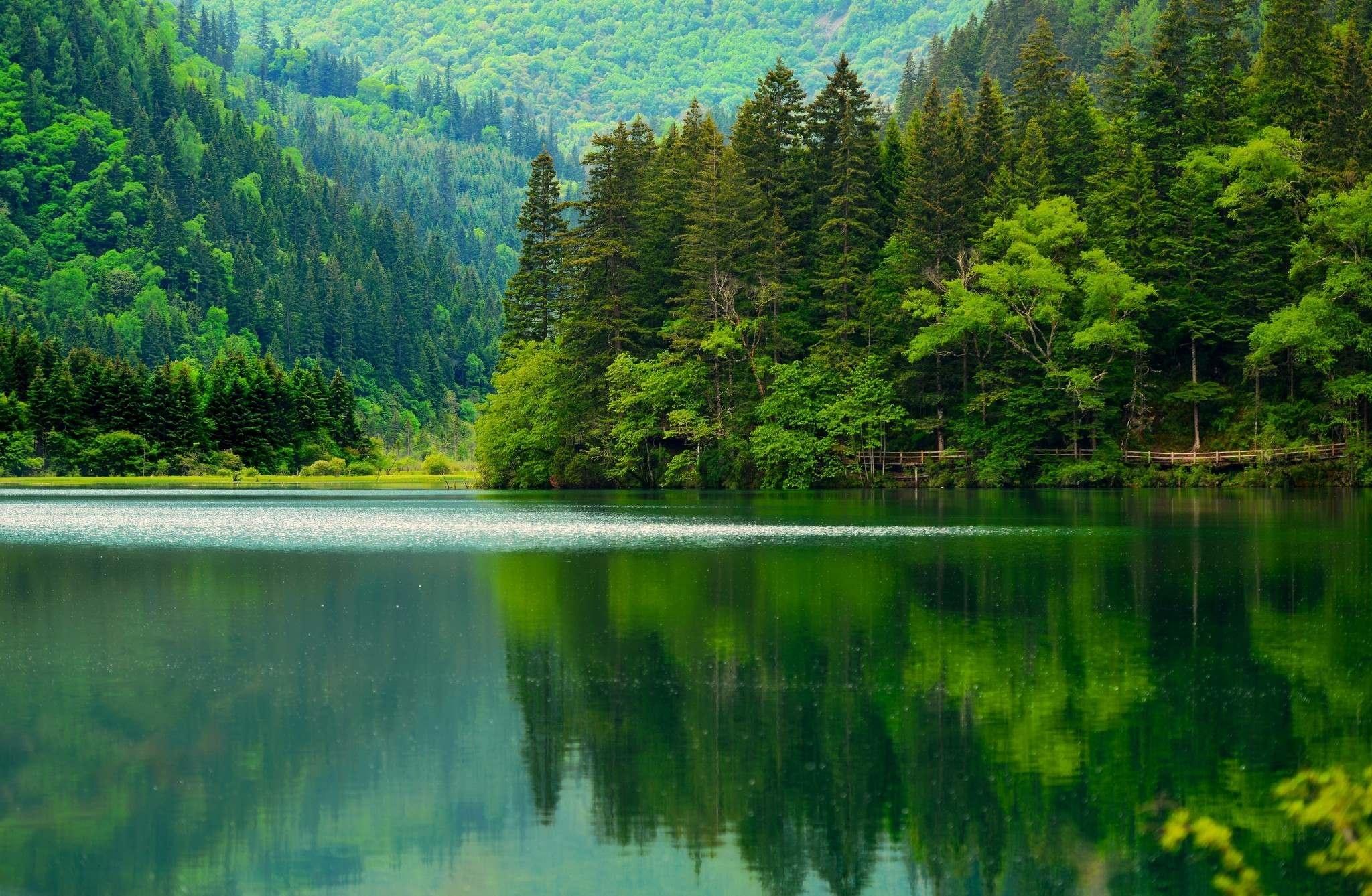 Озеро, гора, зеленый лес  № 621612 загрузить