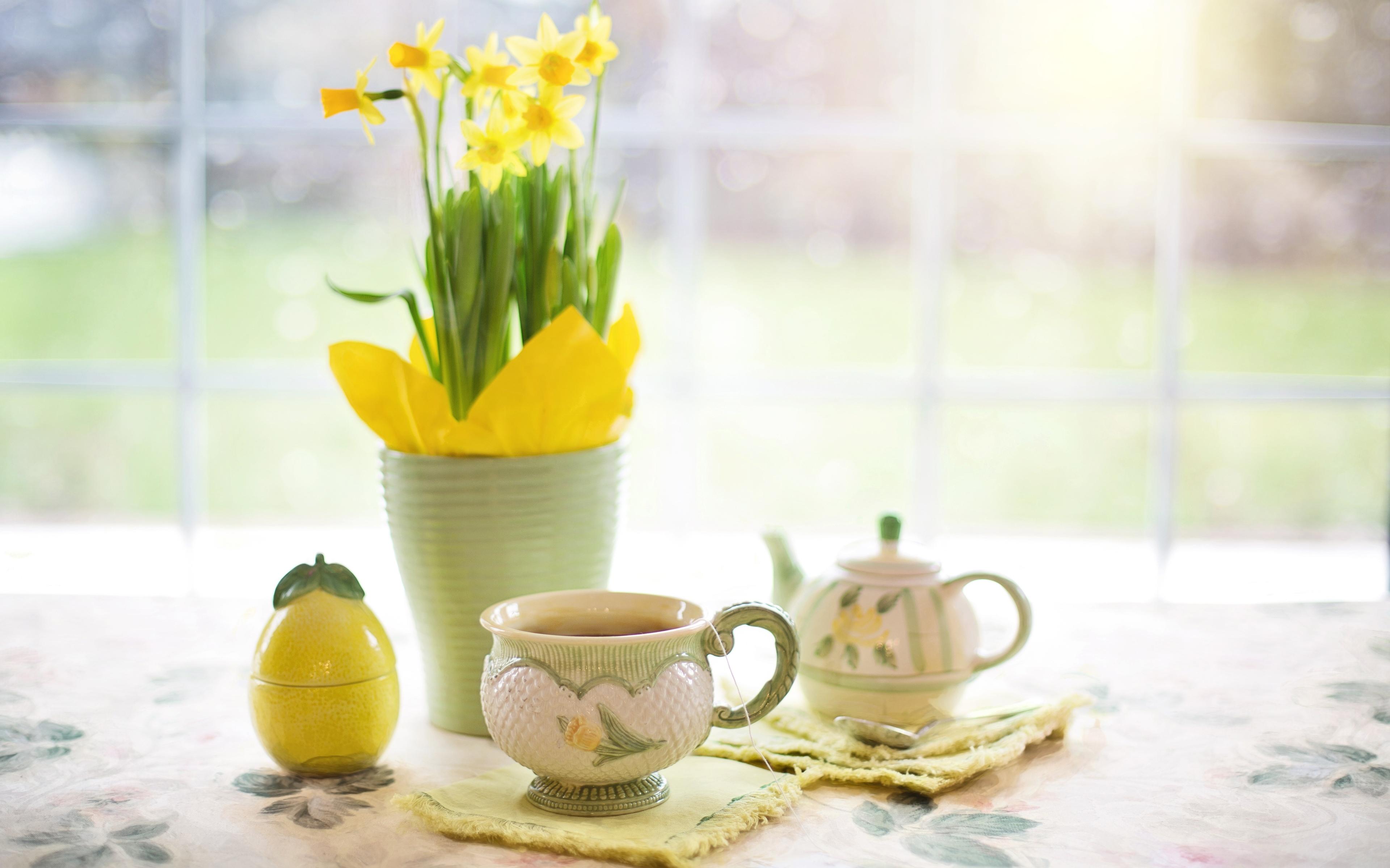 Доброе утро картинки с цветами весенние, открытки днем рождения