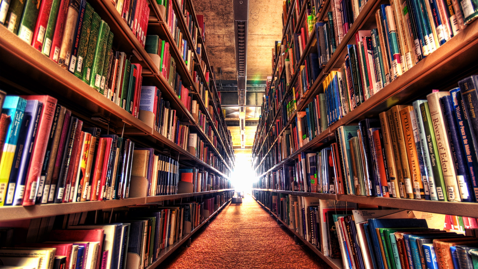 is there life for books and libraries in an internet society? Libraries today are more important than ever more than just book repositories, libraries can become bulwarks against some of the most crucial challenges of our age: unequal access to education, jobs, and information.