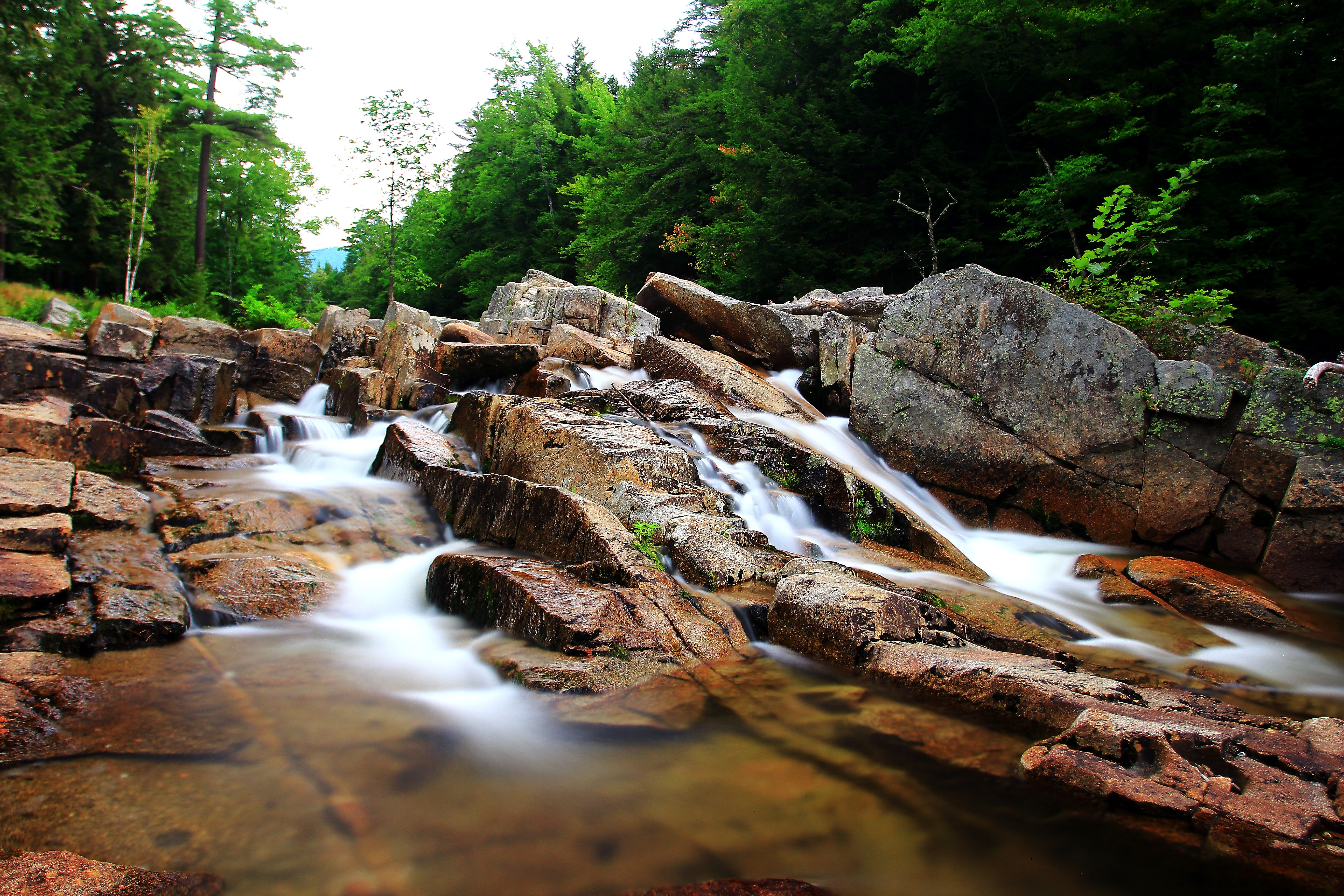 природа камни река деревья nature stones river trees бесплатно
