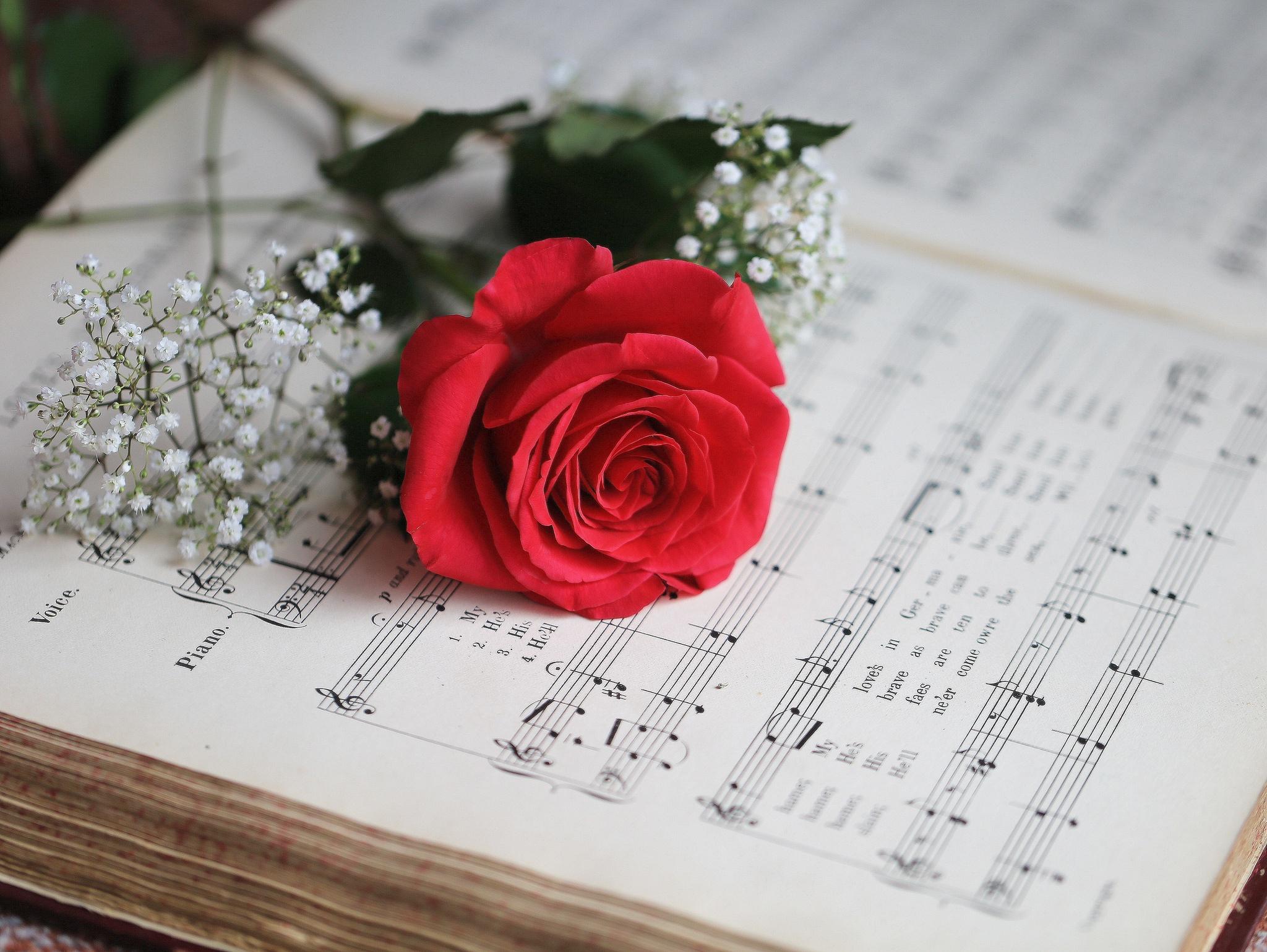Музыкальная открытка цветочек