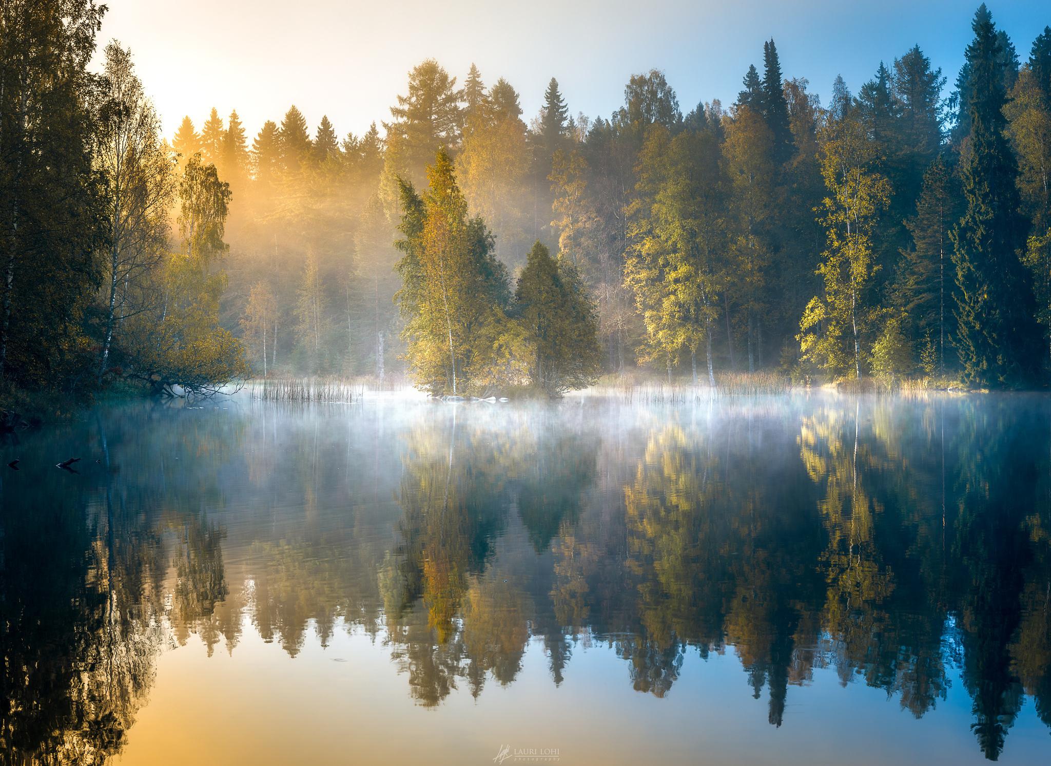 Туман над лесной речкой  № 636757  скачать