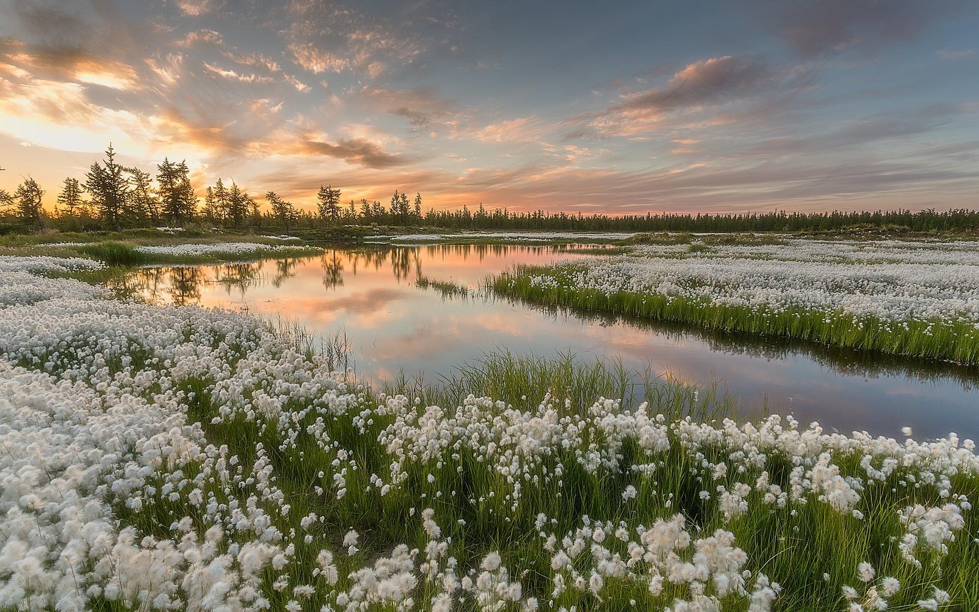 Открытки, картинка природа россии весной