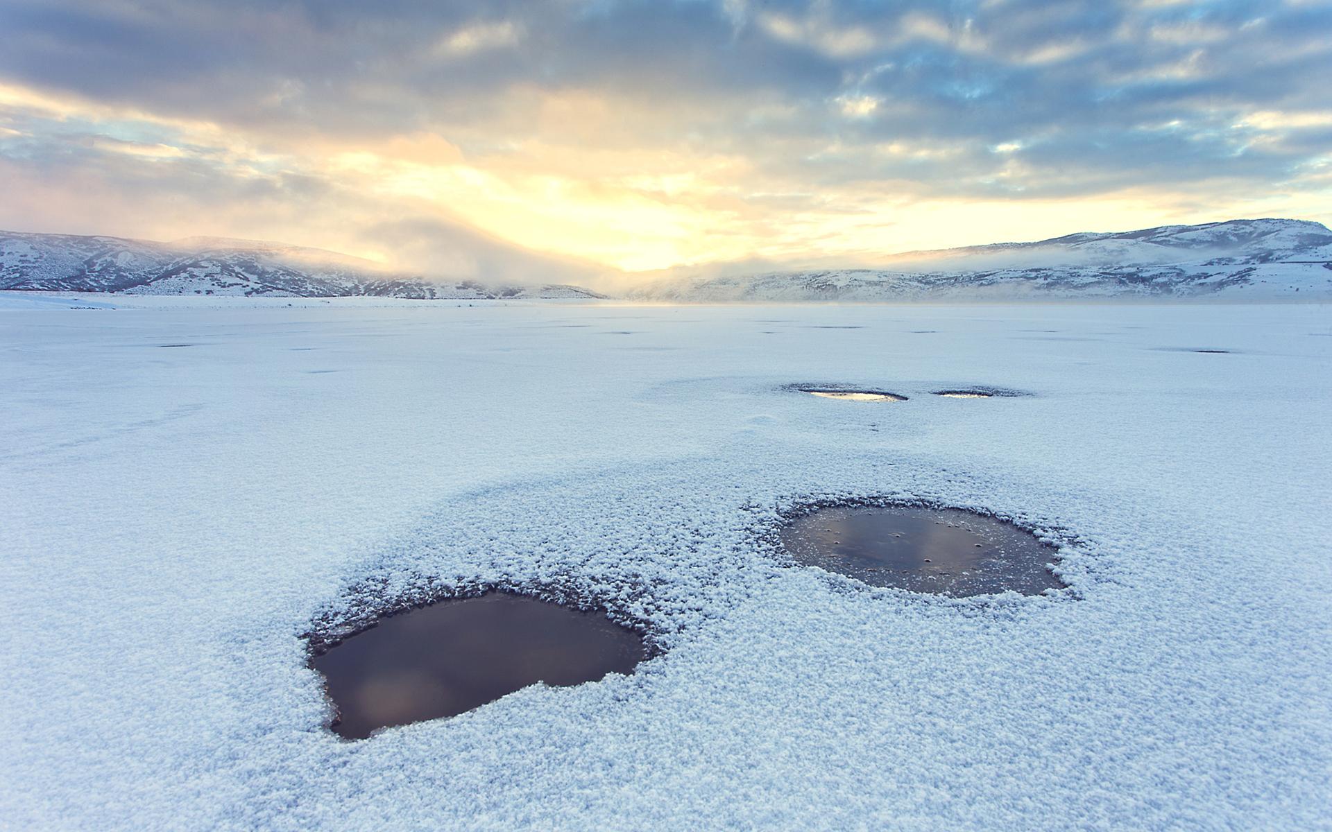 картинки полыньи на реке учатся ухаживать