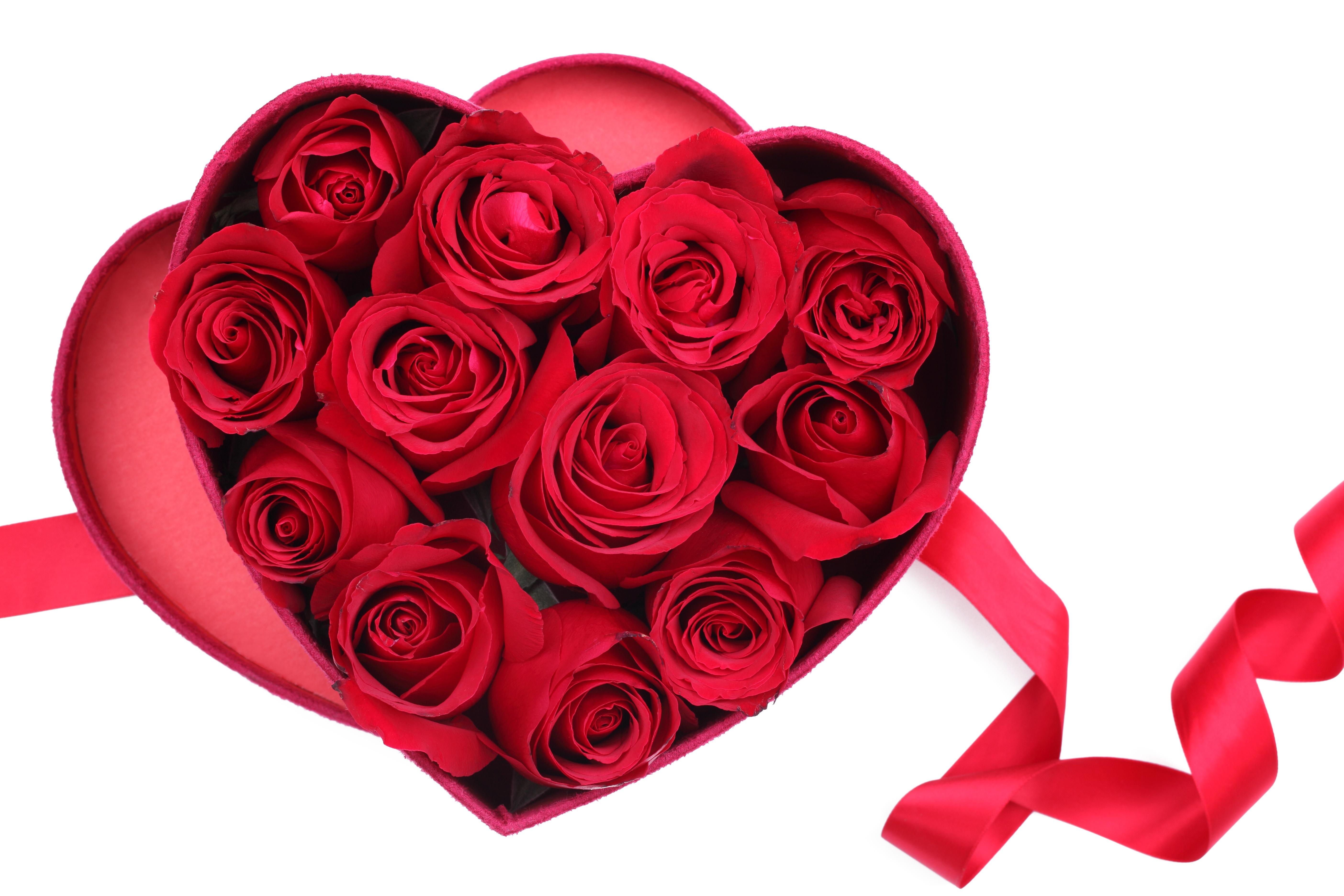 Картинки сердечные цветочные, сестре открытка цветы