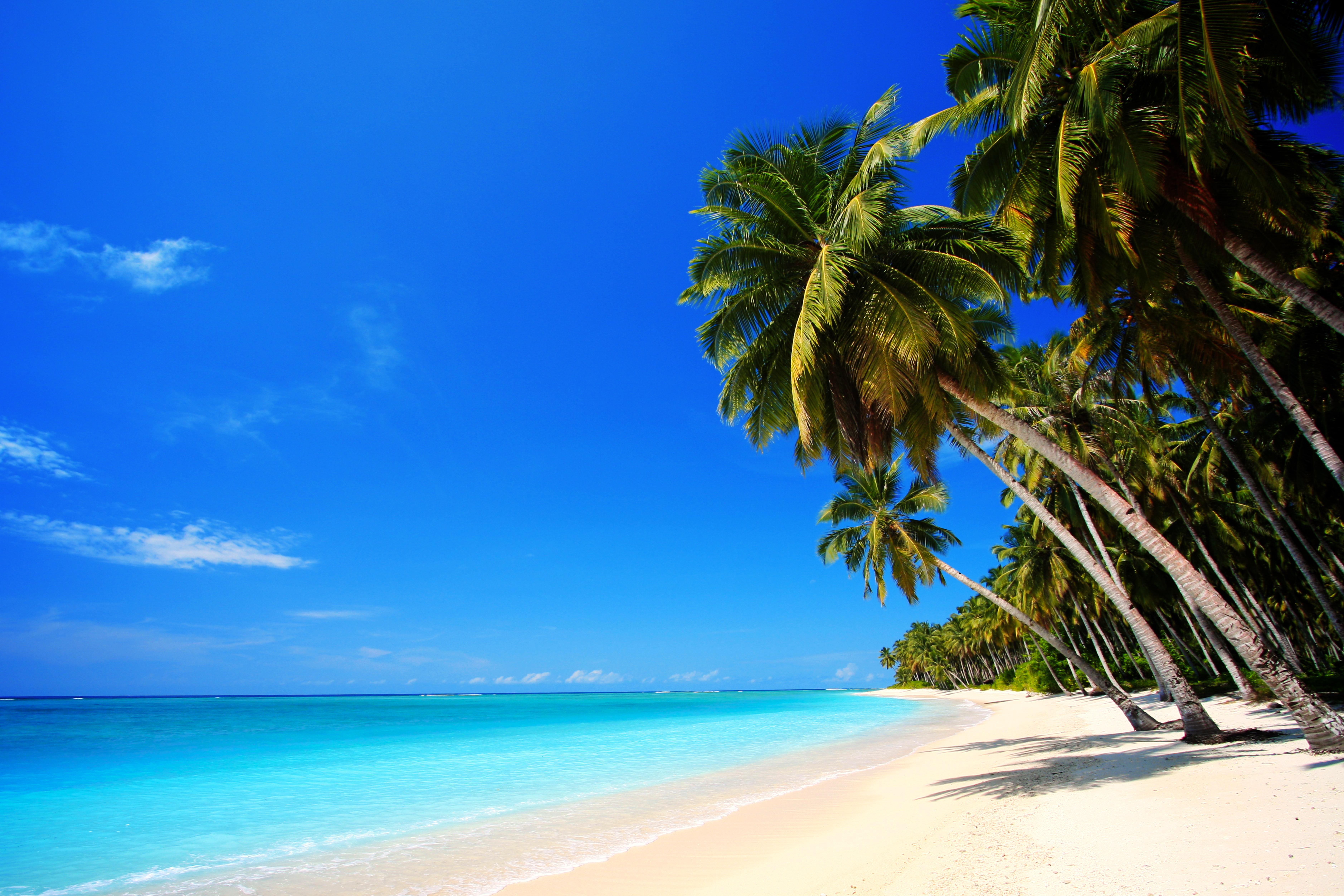 Скачать Обои На Рабочий Стол Пляж