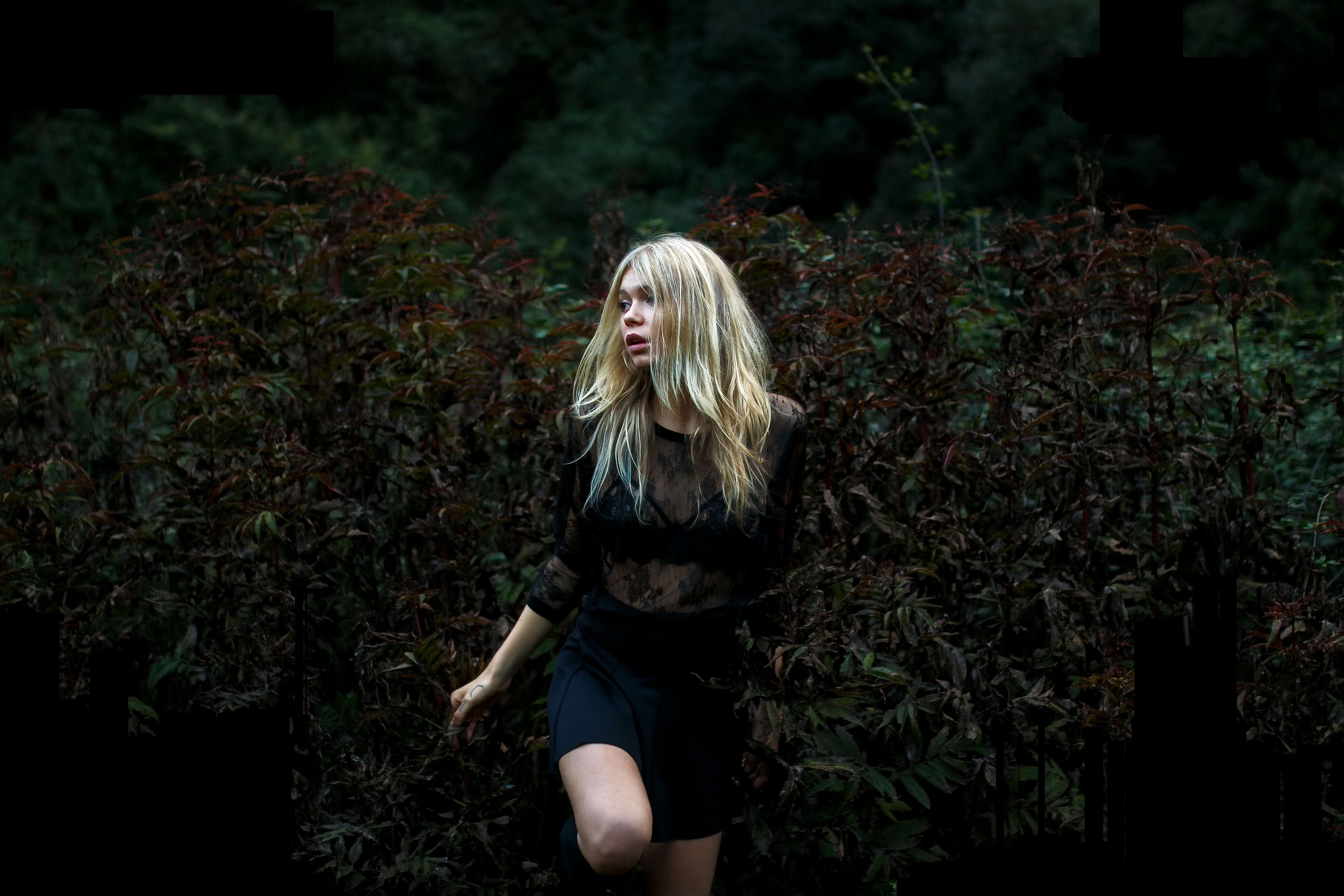 Блондинки в кустах