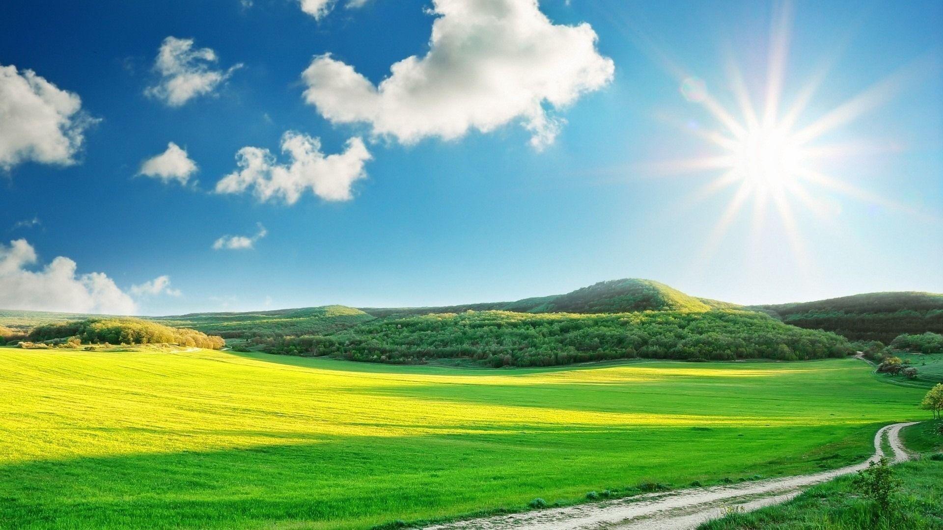 окружено картинка небо летнее для продовольственных