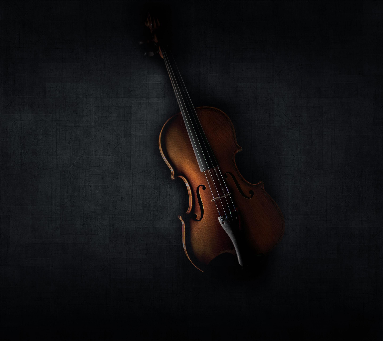 картинка скрипка на черном фоне целинстрой