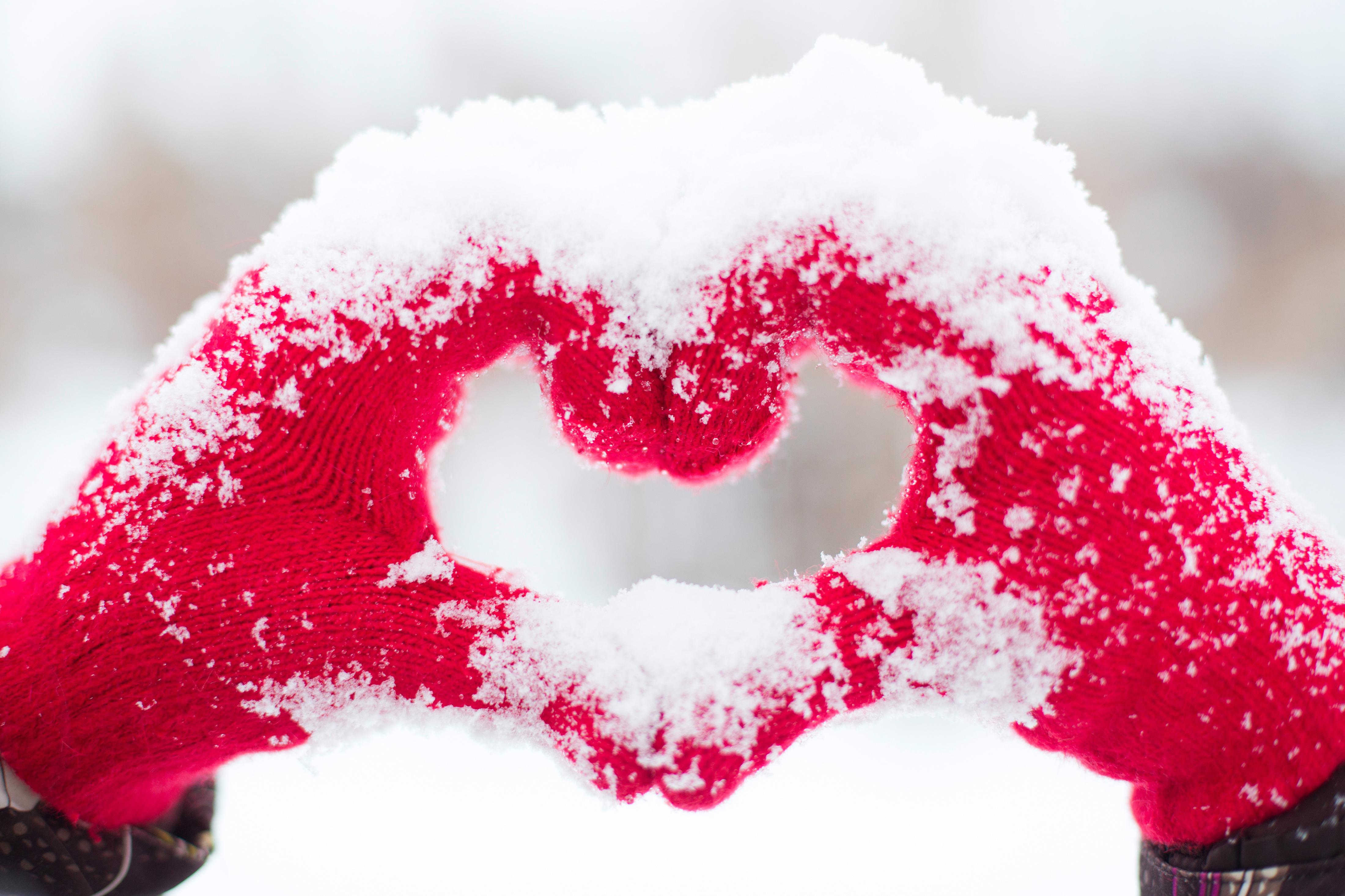 любимые картинки на снегу считает, что