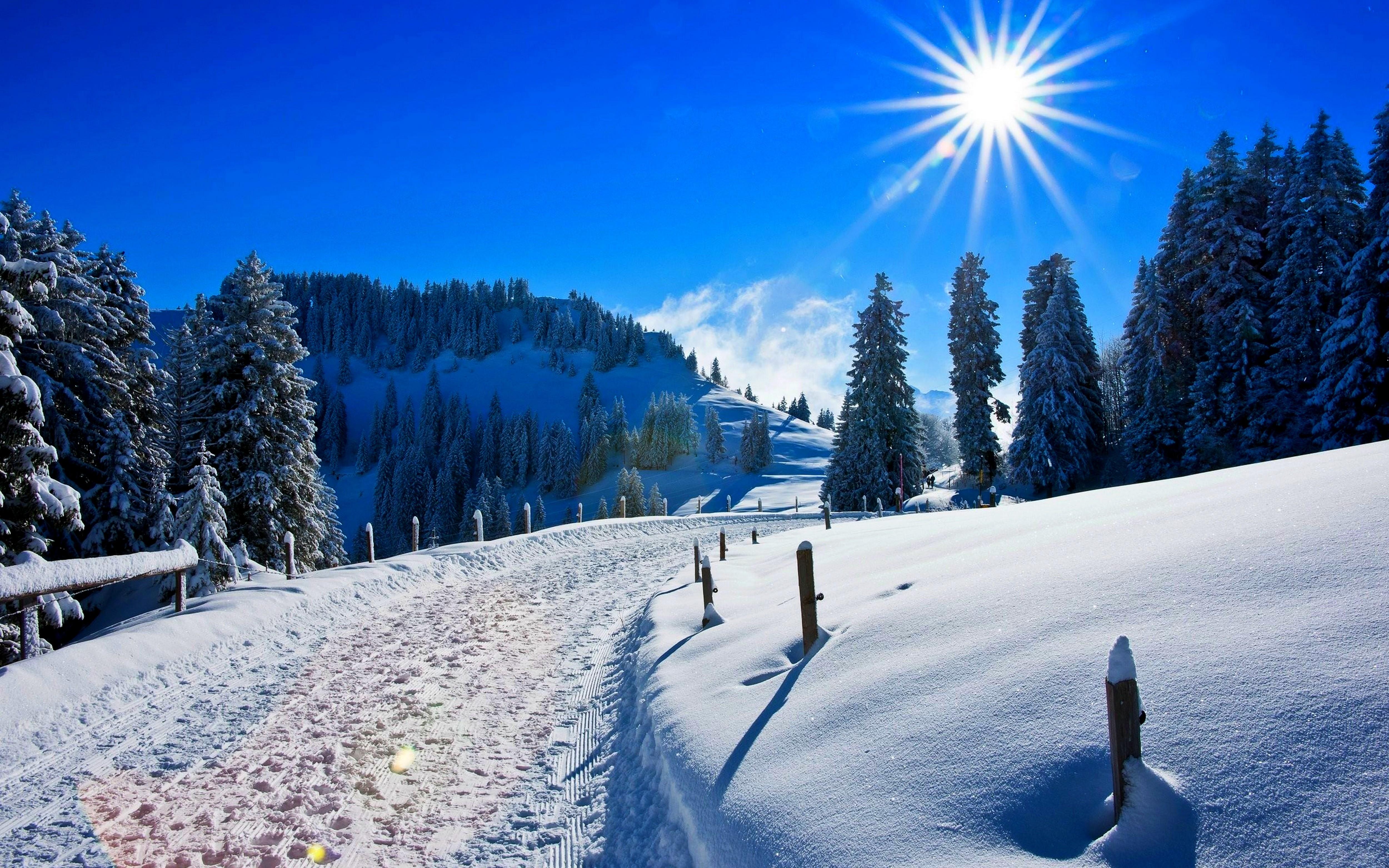 Картинка зима природа