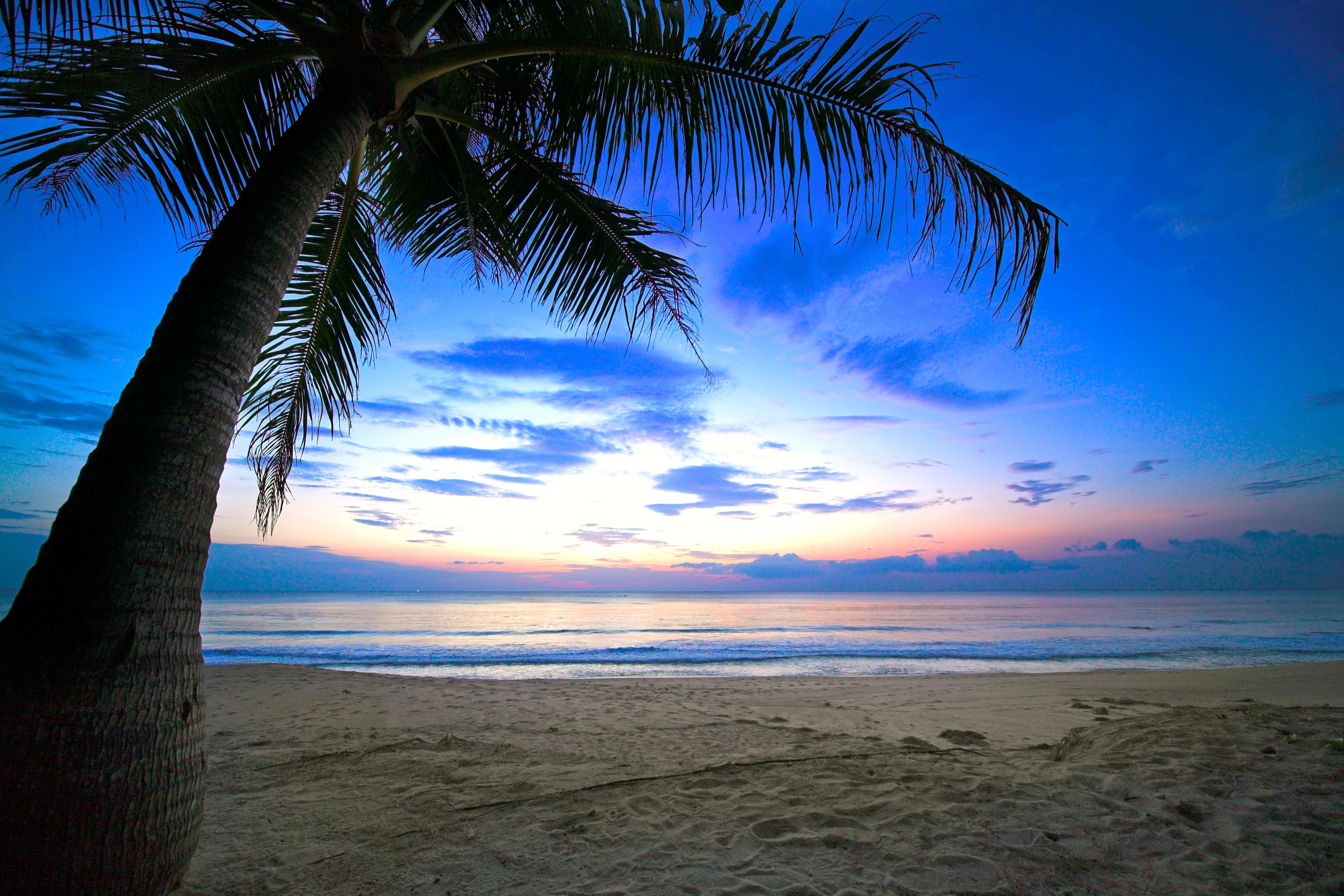 красивые картинки пляжа ночью может отнестись такому