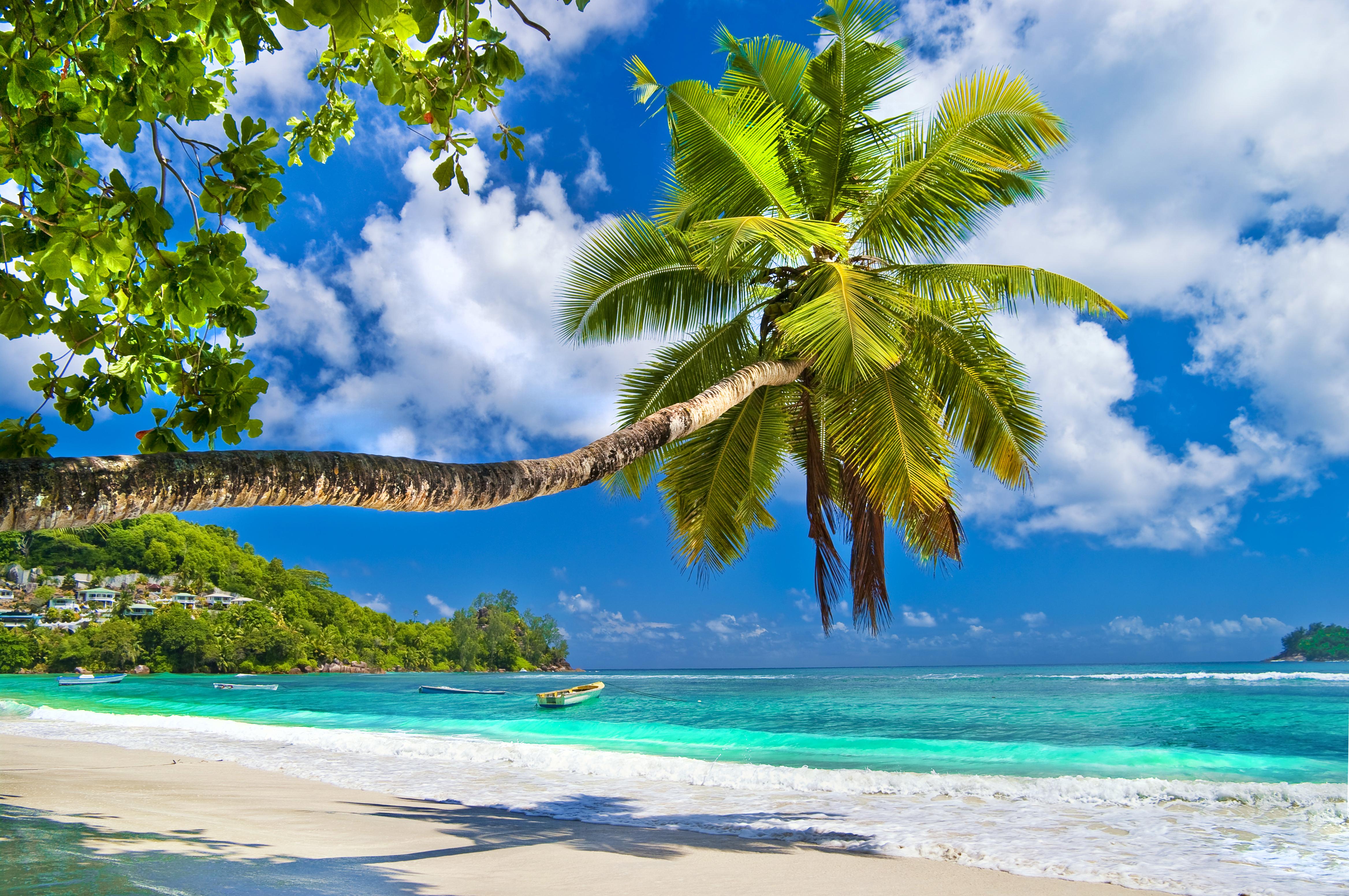 мои картинки пляж большое разрешение голубой